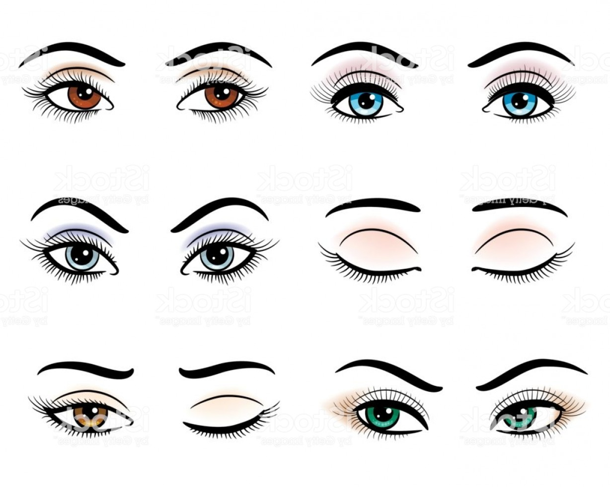 Woman Eye Vector Graphics: Open And Closed Woman Eyes Gm