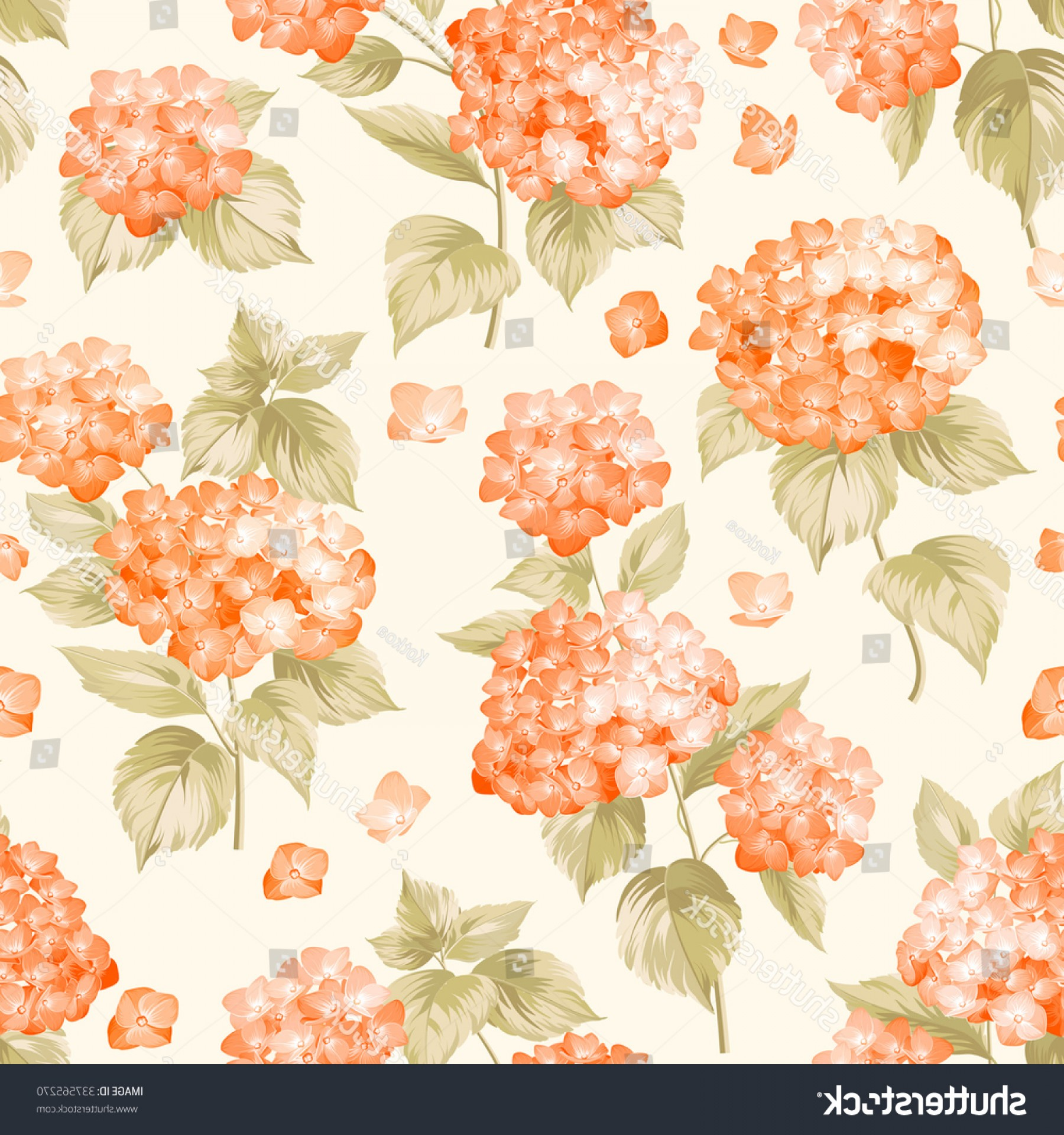 Vector Mop Flower: Orange Flower Hydrangea On Seamless Background