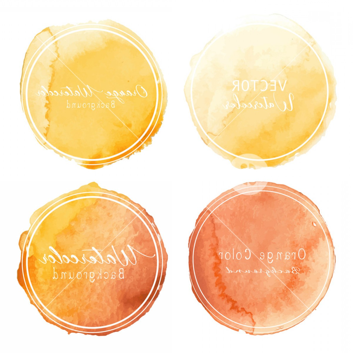 Orange Watercolor Vector Free: Orange Watercolor Circle Set On White Background Vector Illustration Boneavjrzjrh