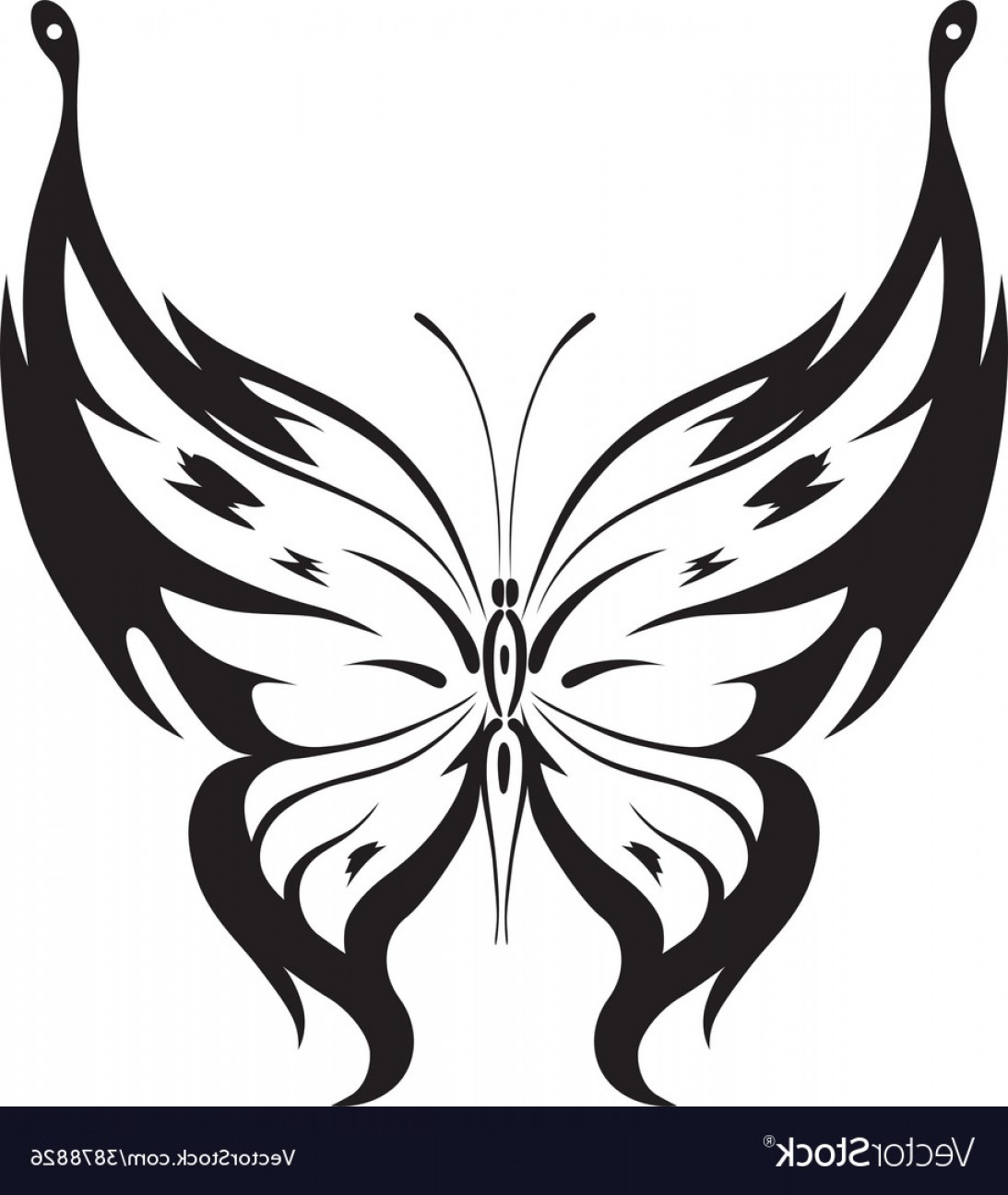 Butterly Vector: Ornamented Abstract Silhouette Butterfly Vector