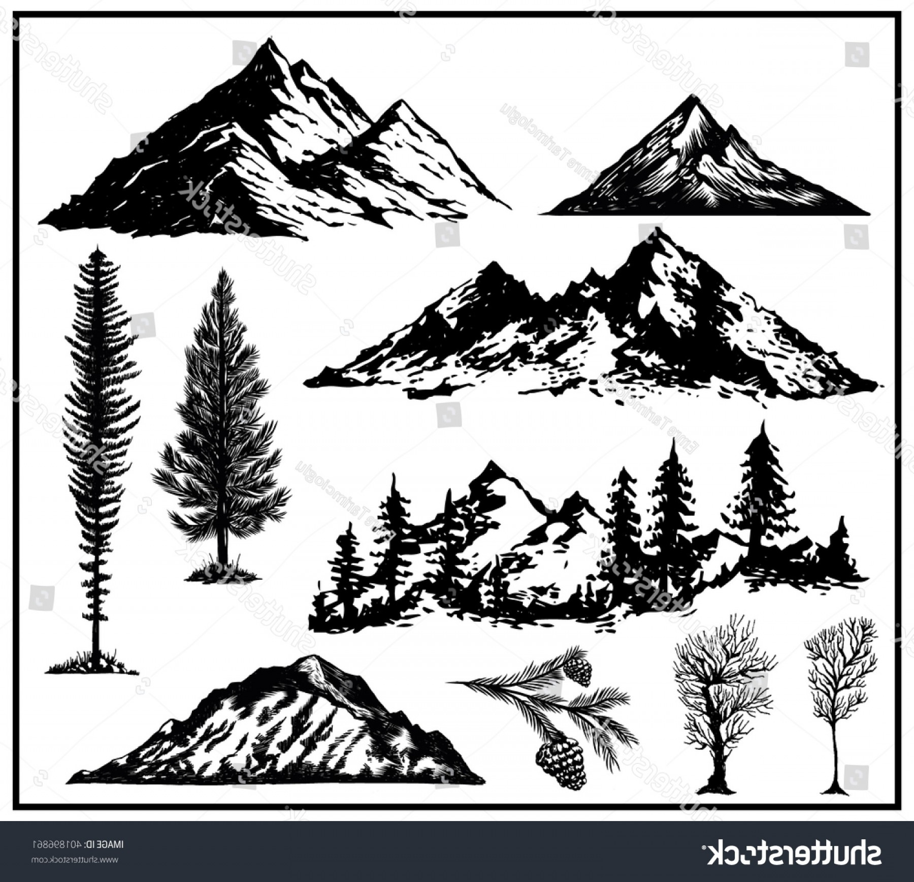 Vector Art Mountains Trees Colorado: Outdoor Art Hand Drawn Nature Pines