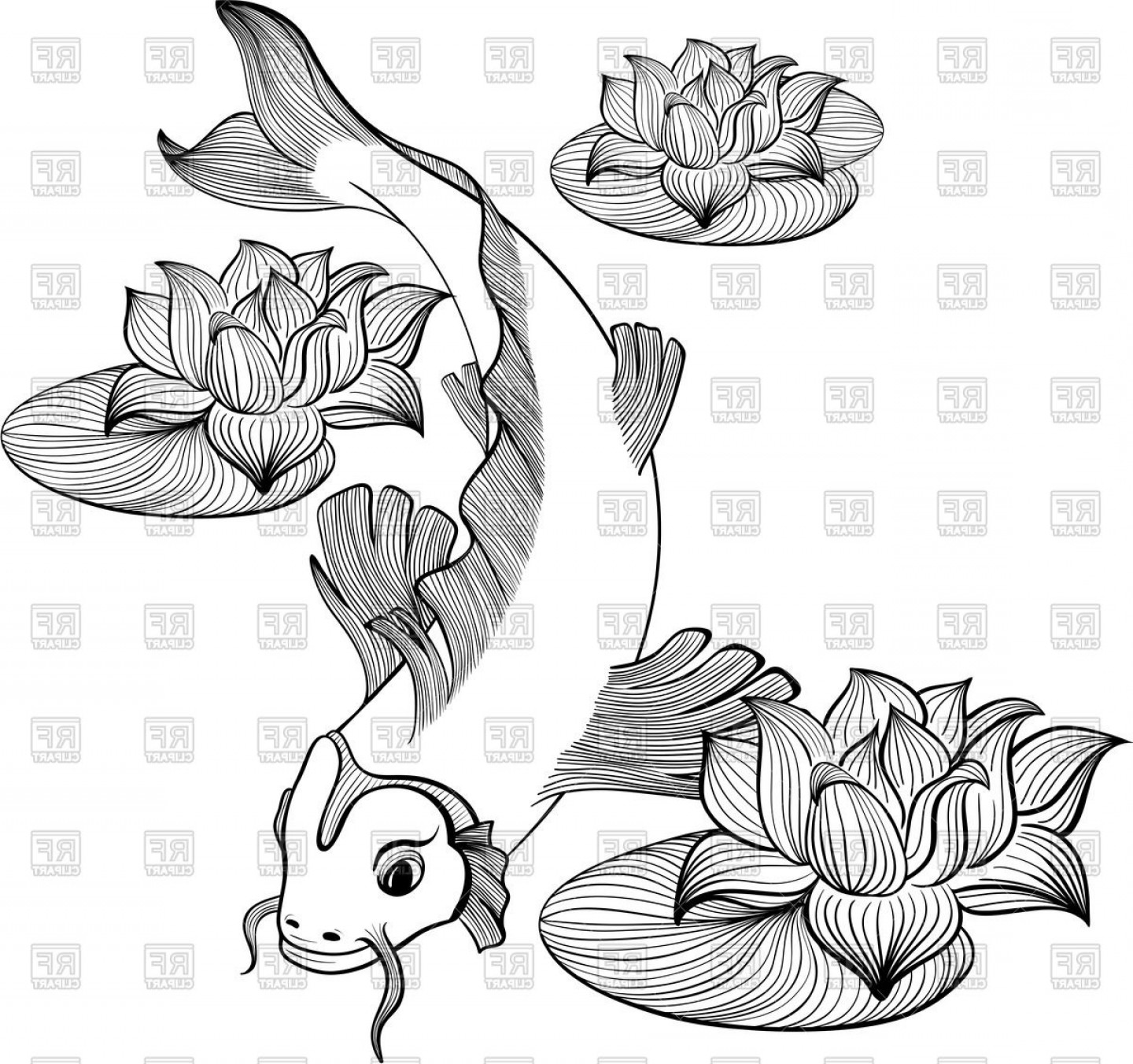 Koi Vector: Outline Koi Carp Between Lotus Flowers Vector Clipart