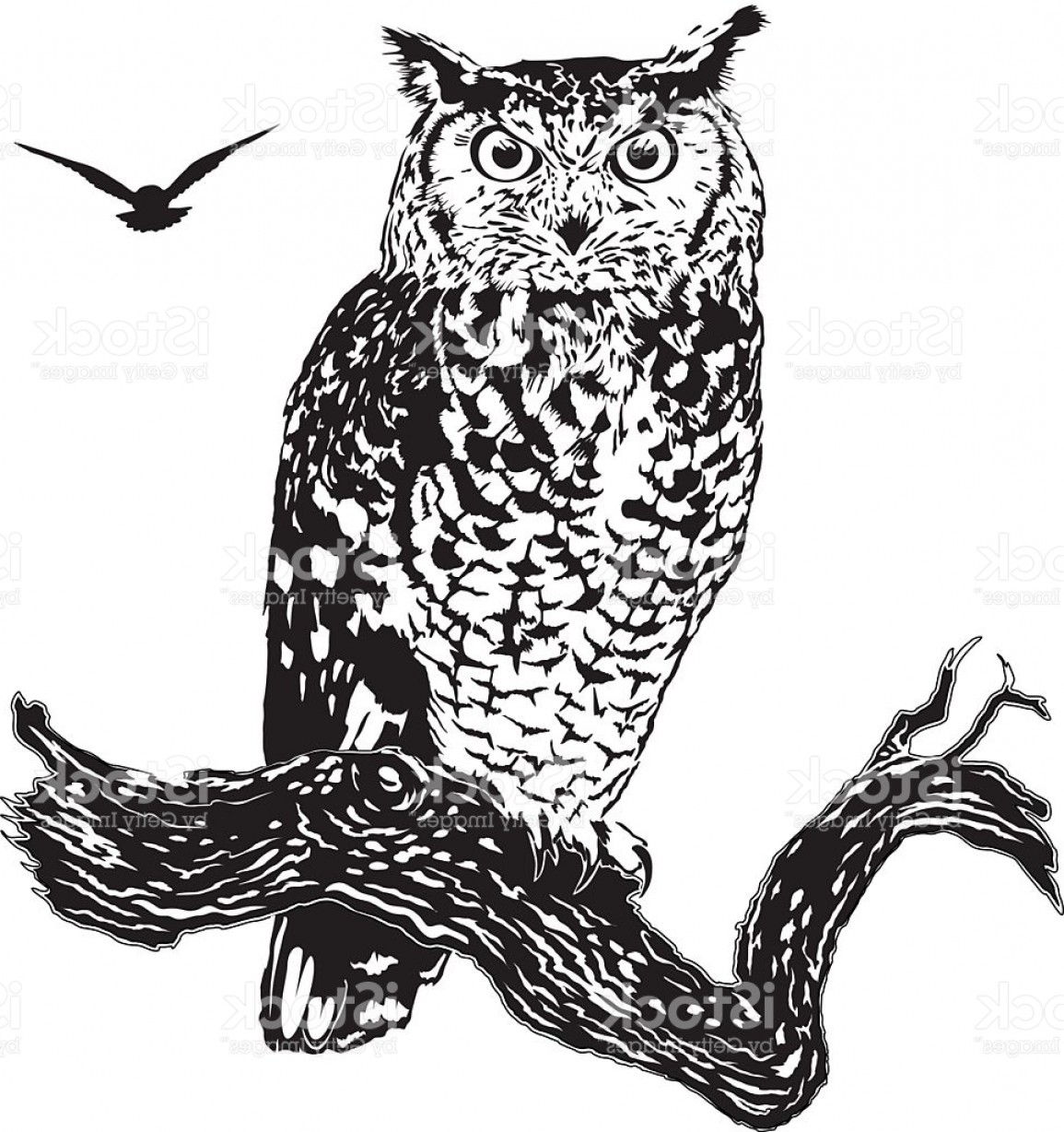 Owl Silhouette Vector Art: Owl Vector Graphic Decorative Tattoo Design Gm