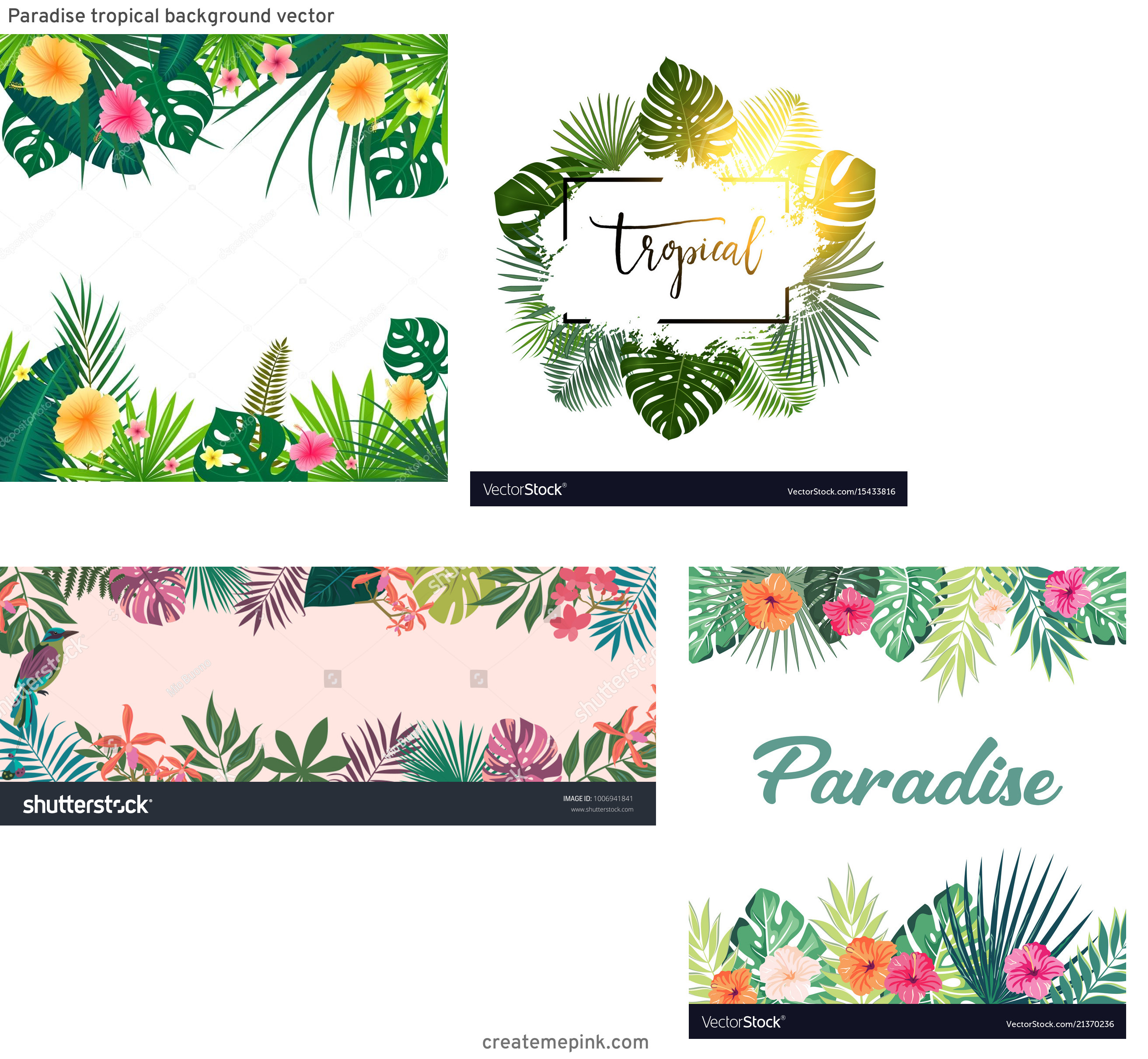 Tropical Background Vector: Paradise Tropical Background Vector