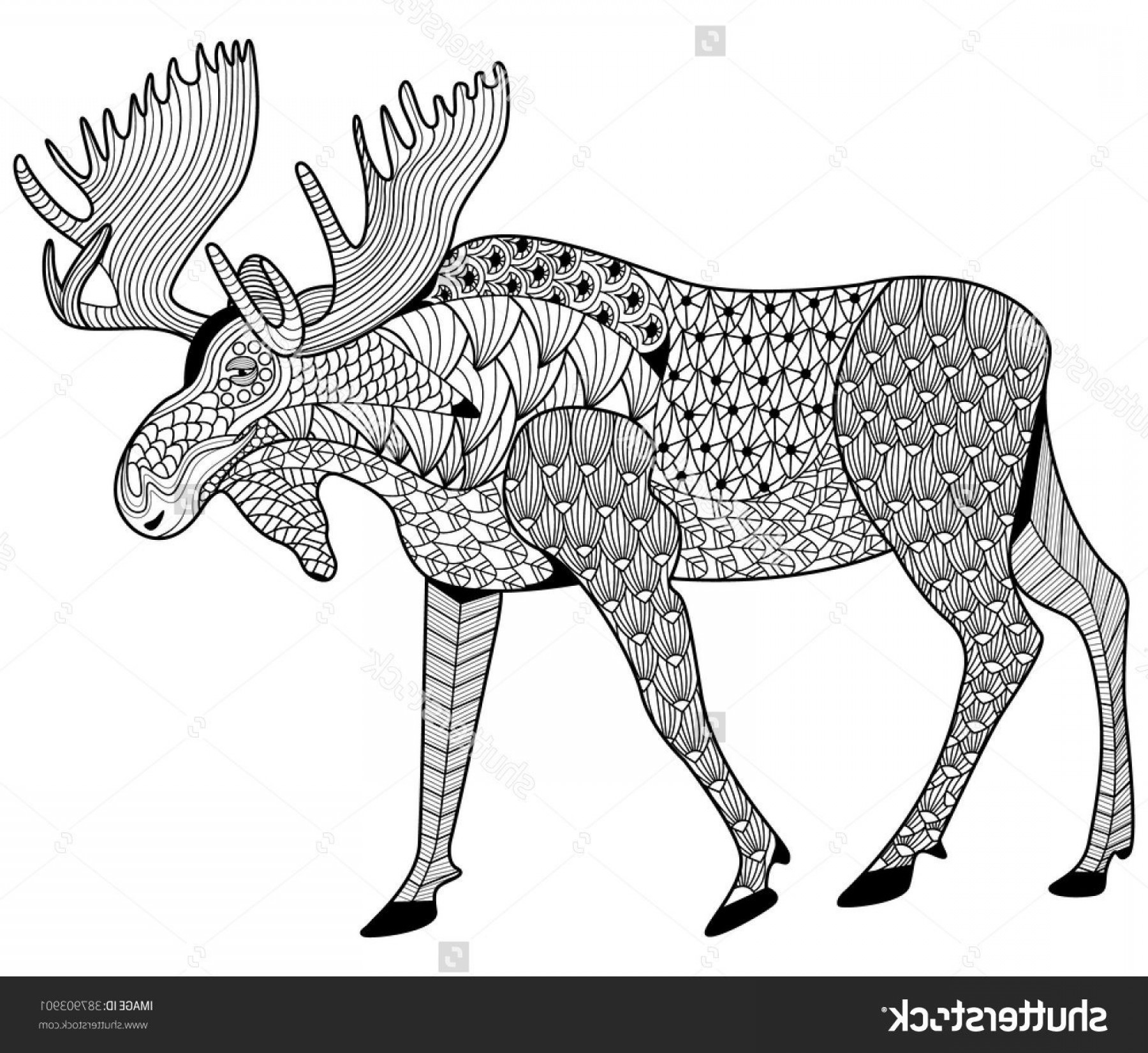 Alaska Moose Vectors: Perspective Moose Coloring Pages Stock Vector Page For Adults Zen Tangle Design