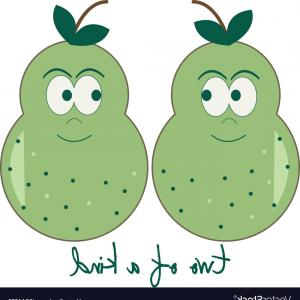 Pair Pear Vector: Pear Of A Kind Vector