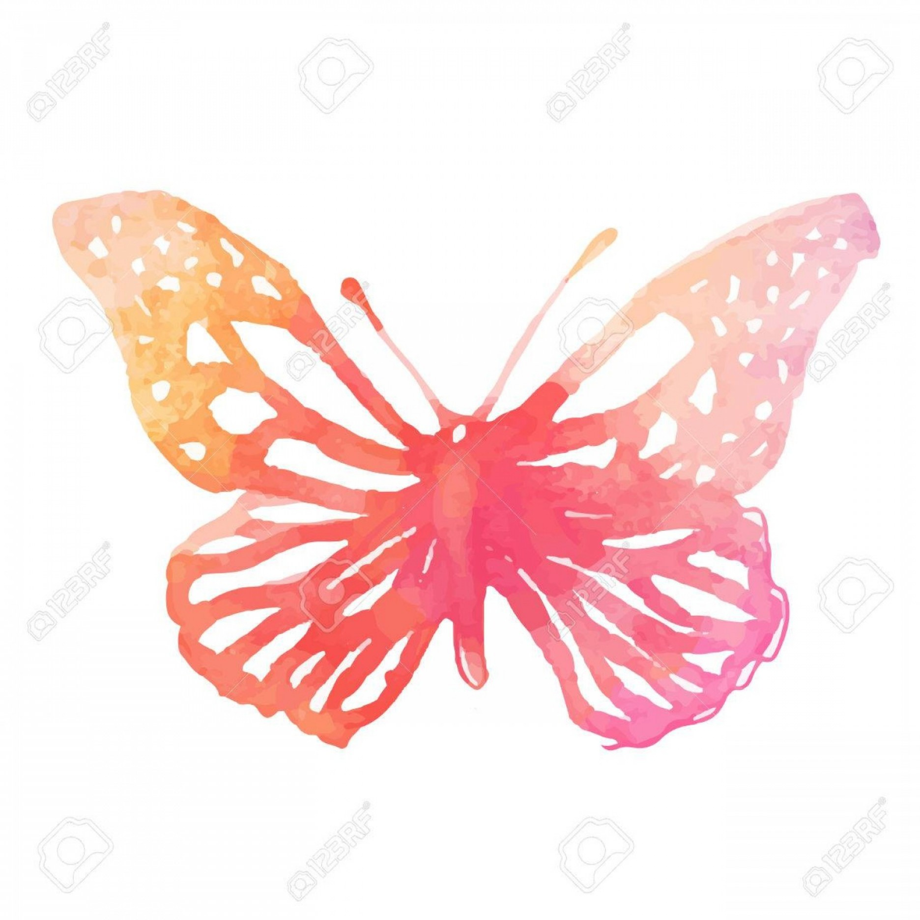 Butterly Vector: Photoamazing Watercolor Butterfly Vector Art Isolated On White