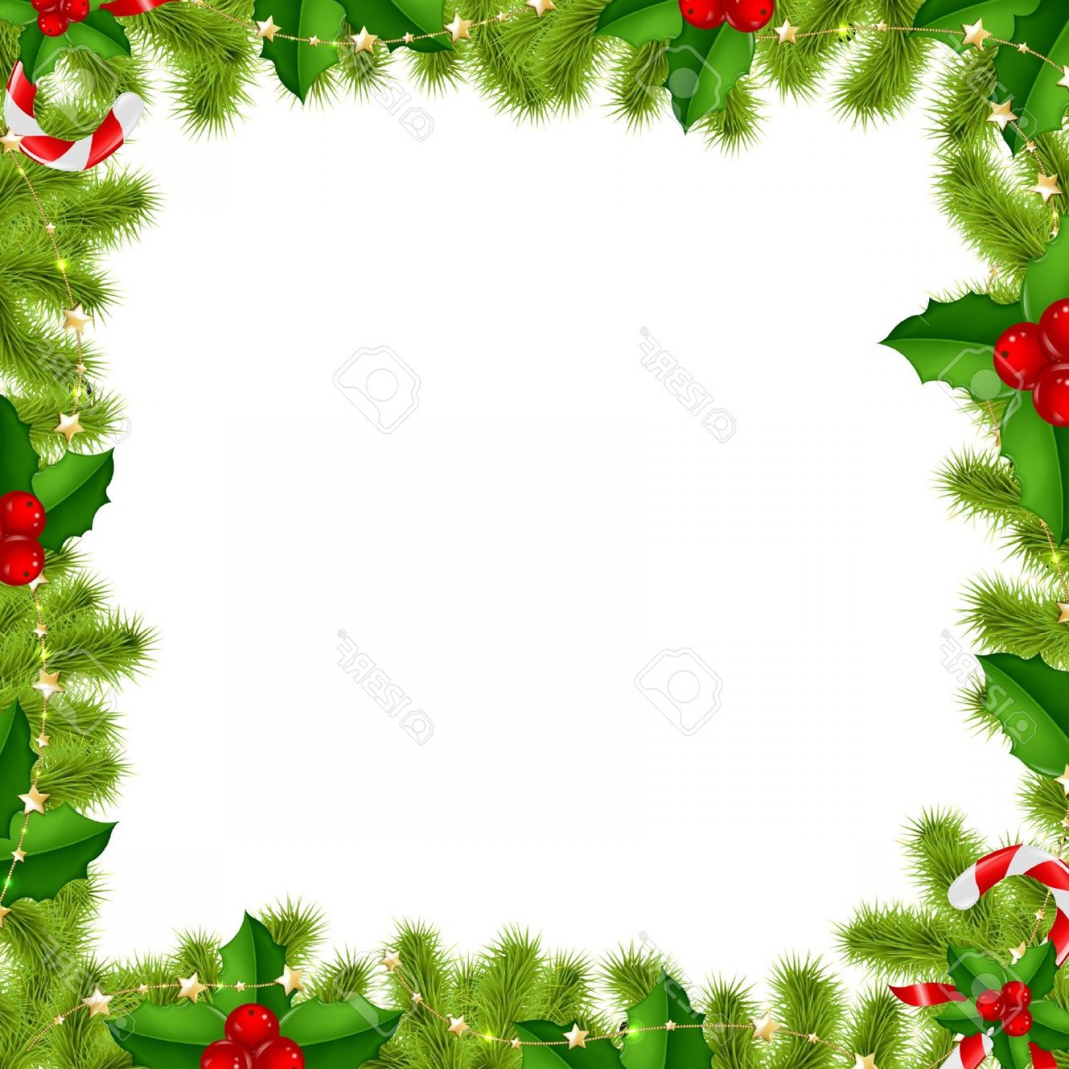 Holly Berry Vector Border: Photoborder Fir Tree Branches With Gold Stars And Holly Berry Isolated On White Background With Gradient
