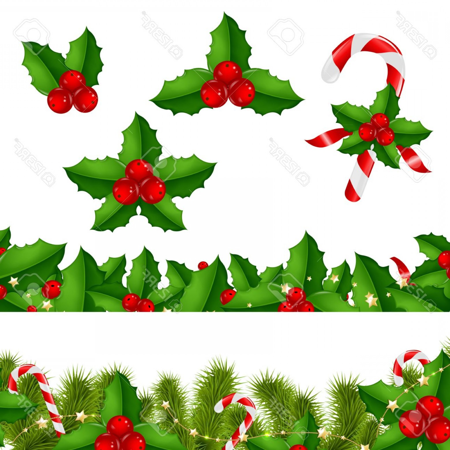 Holly Berry Vector Border: Photoborders Fir Tree With Holly Berry With Gradient Mesh Vector Illustration
