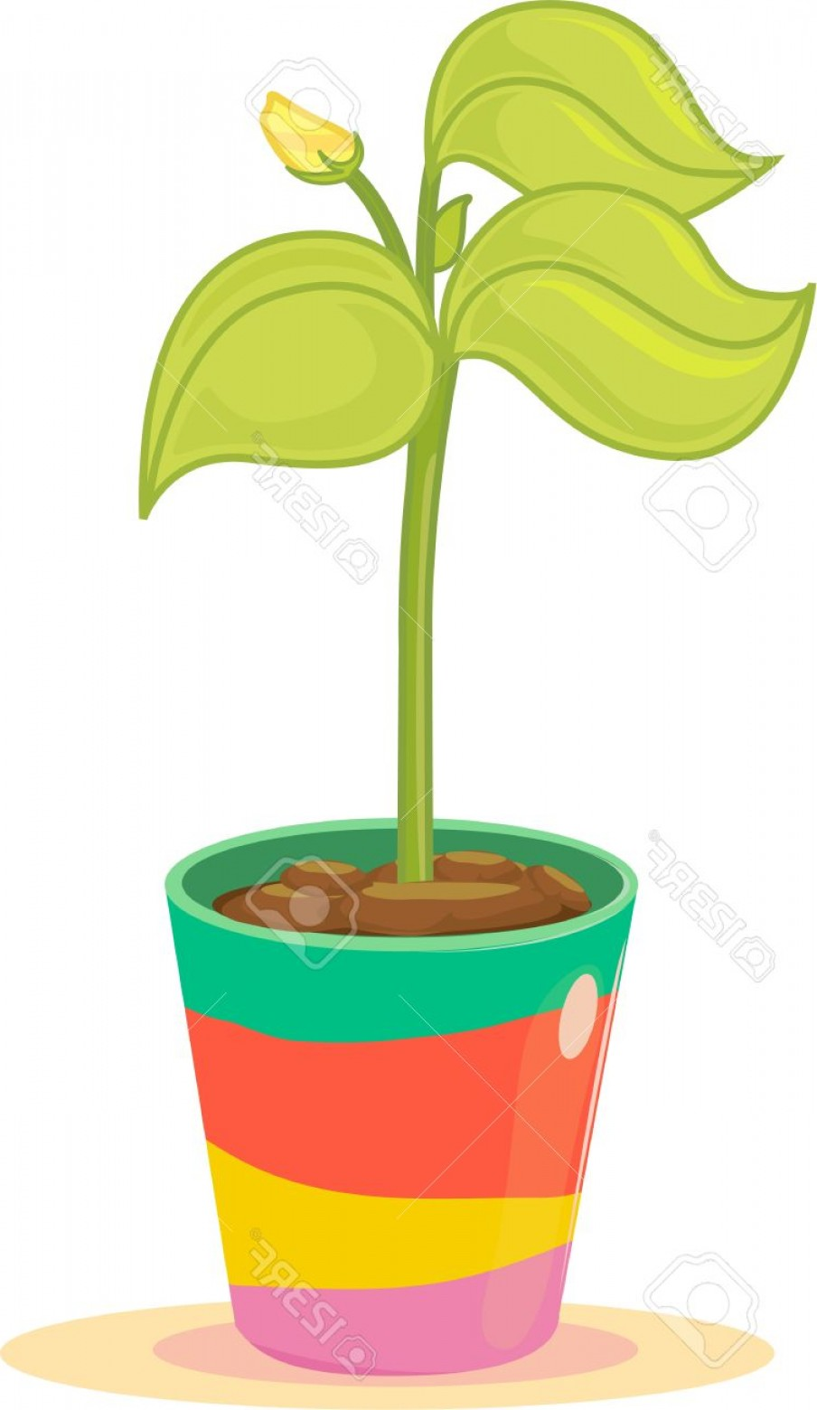Vector Image Of A Budding Flower: Photobudding Yellow Flower In Colourful Plant Pot