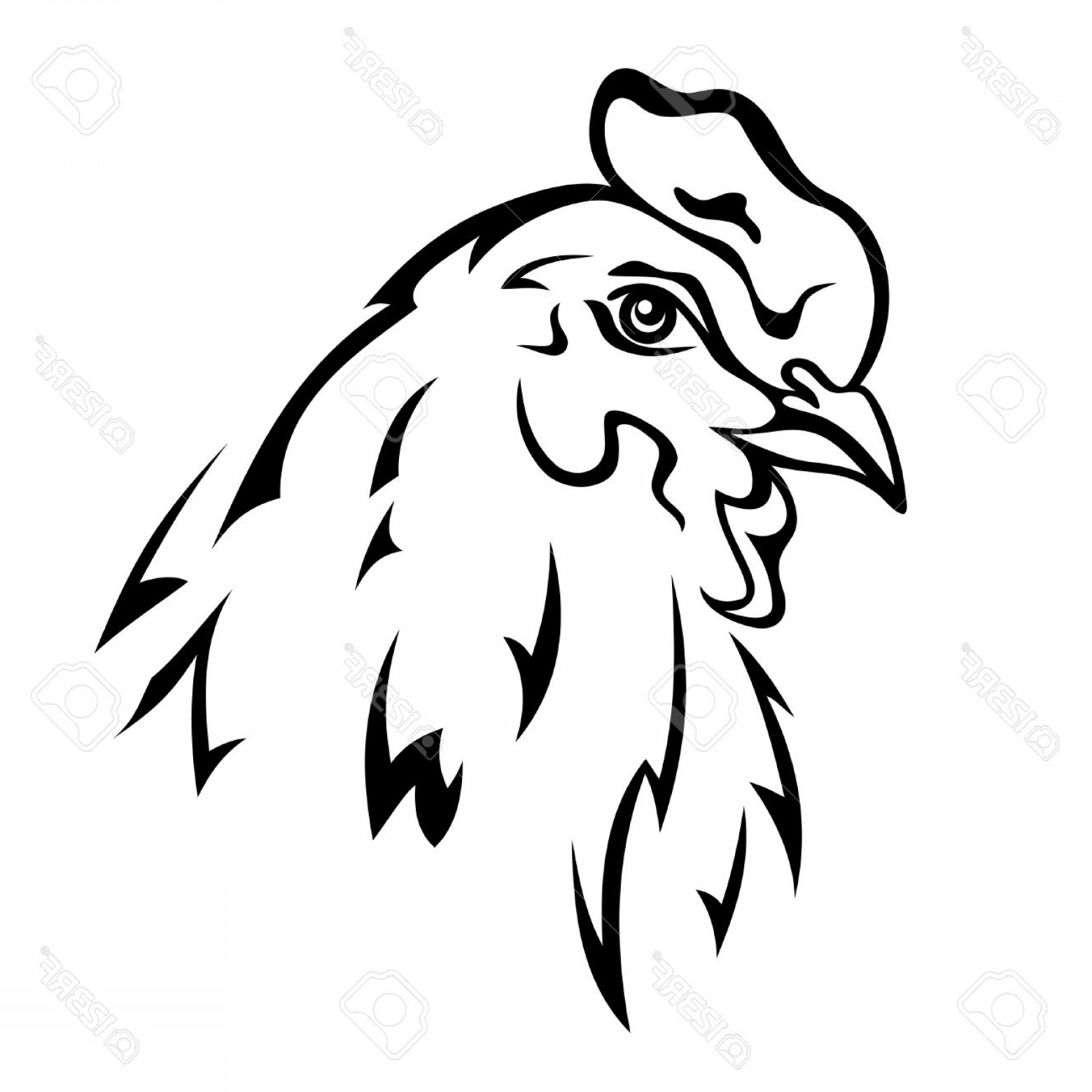 Chicken Vector Black: Photochicken Head Vector Illustration Black And White Outline