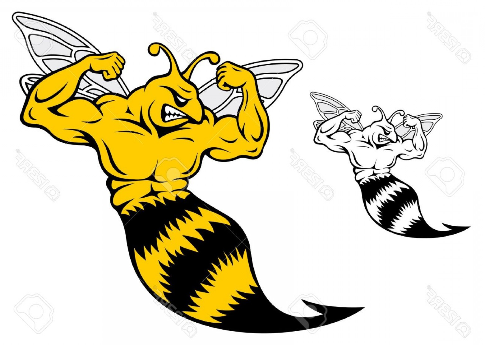 Yellow Jacket Vector Art: Photodanger Yellow Jacket With Muscles For Mascot Design