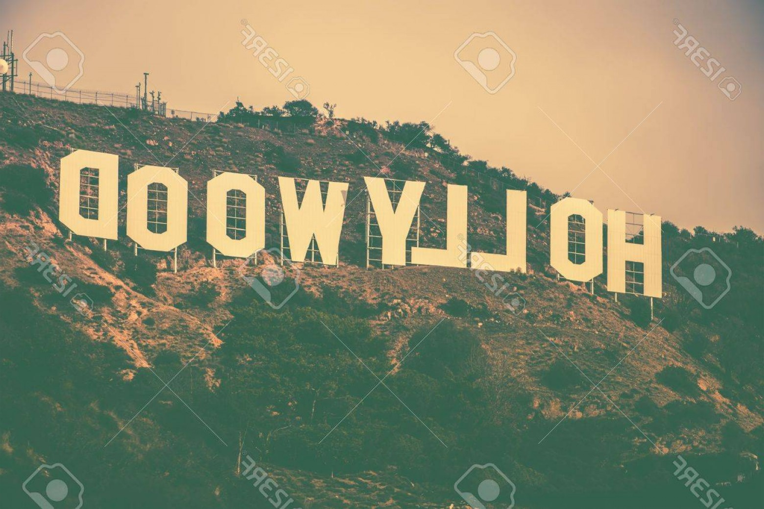 Hollywood Hills Vector: Photofamous Hollywood Hills In Los Angeles Metro Area California United States Hollywood Sign In Vintage