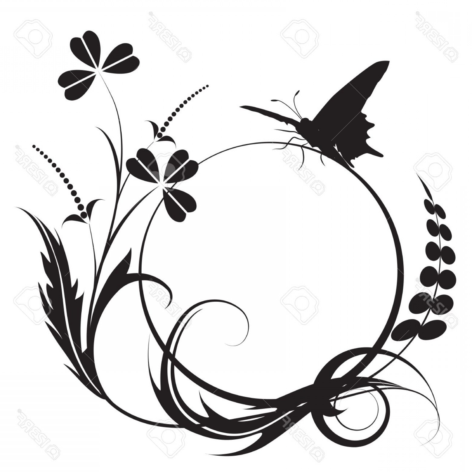 Butter Fly And Flower Vector Black And White: Photofloral Background With Butterfly In Black And White Colors