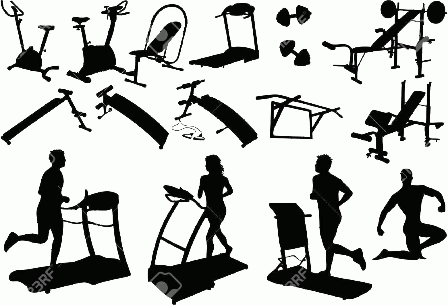Vector Gym Equipment: Photogym Equipment Made In The Image Vectors