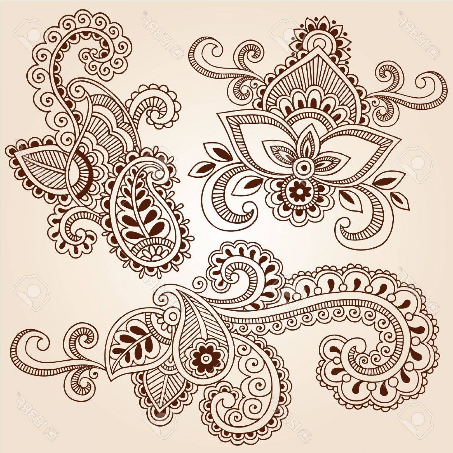 Paisley Swirl Flower Vector: Photohand Drawn Henna Paisley Flowers Mehndi Doodles Abstract Floral Vector Illustration Design Elements
