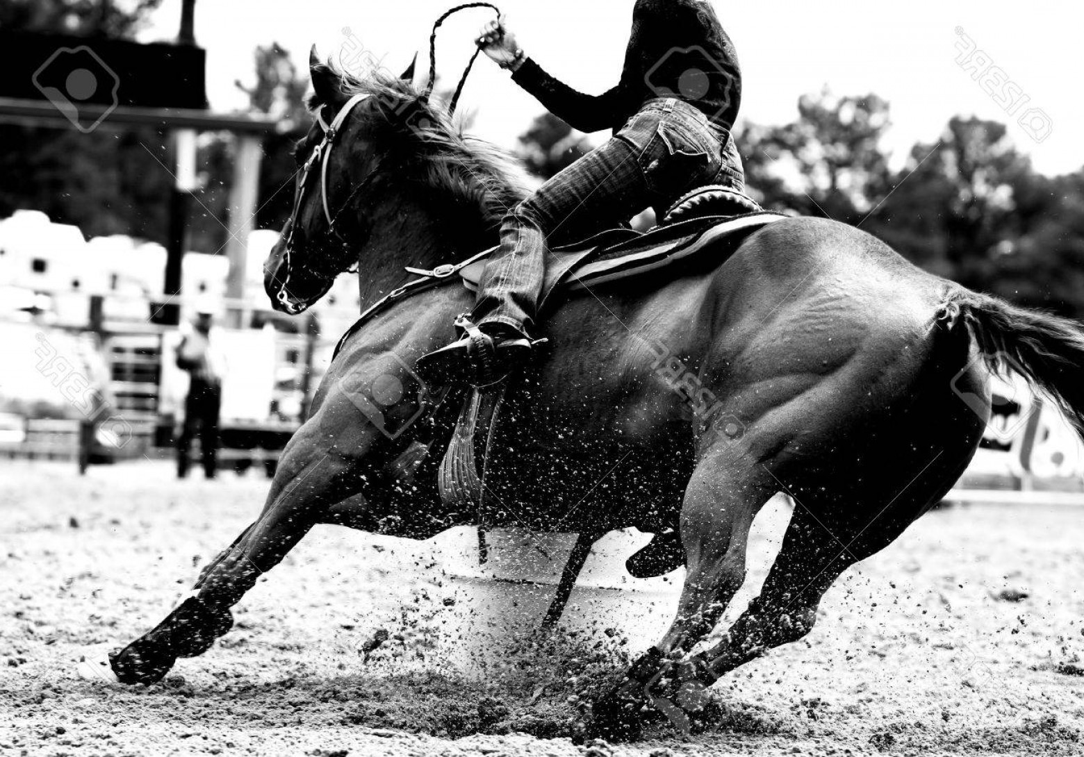 Barrel Racer Vector: Photohigh Contrast Black And White Closeup Of A Rodeo Barrel Racer Making A Turn At One Of The Barrels Sh
