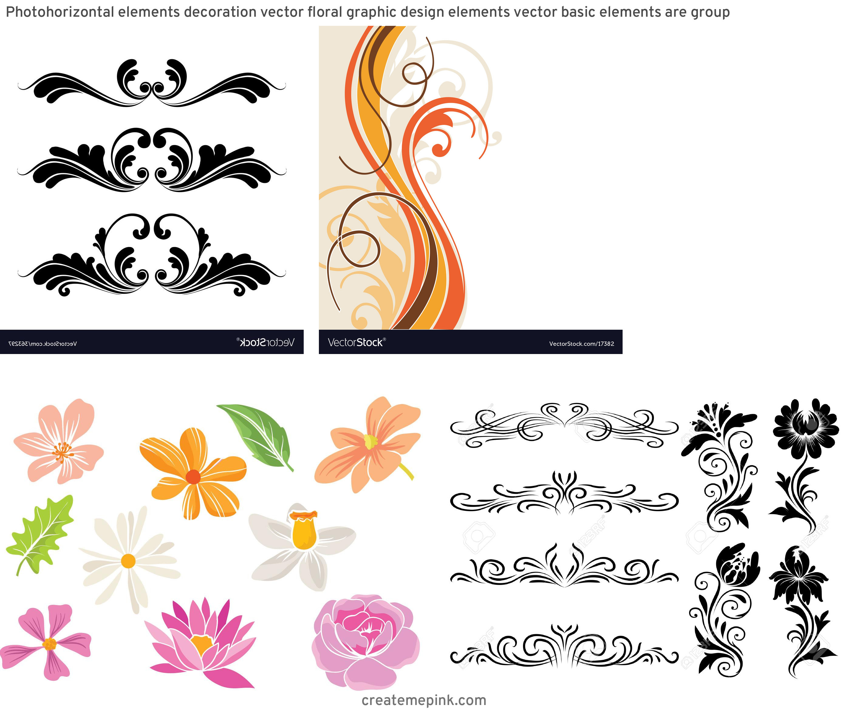 Vector Graphics Floral: Photohorizontal Elements Decoration Vector Floral Graphic Design Elements Vector Basic Elements Are Group