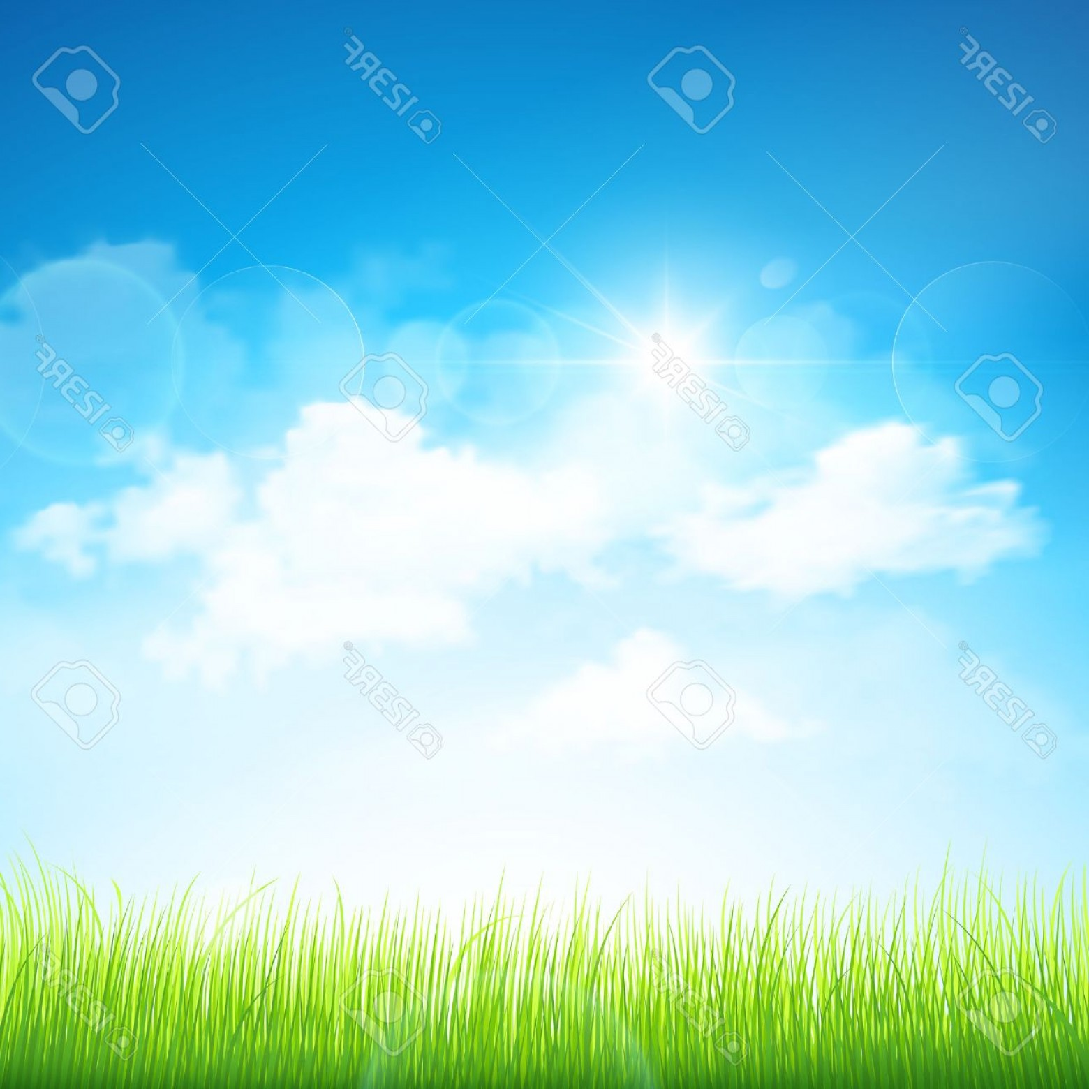 Vector Natural Background Sky: Photonatural Background With Green Grass And Blue Sky With Clouds Vector