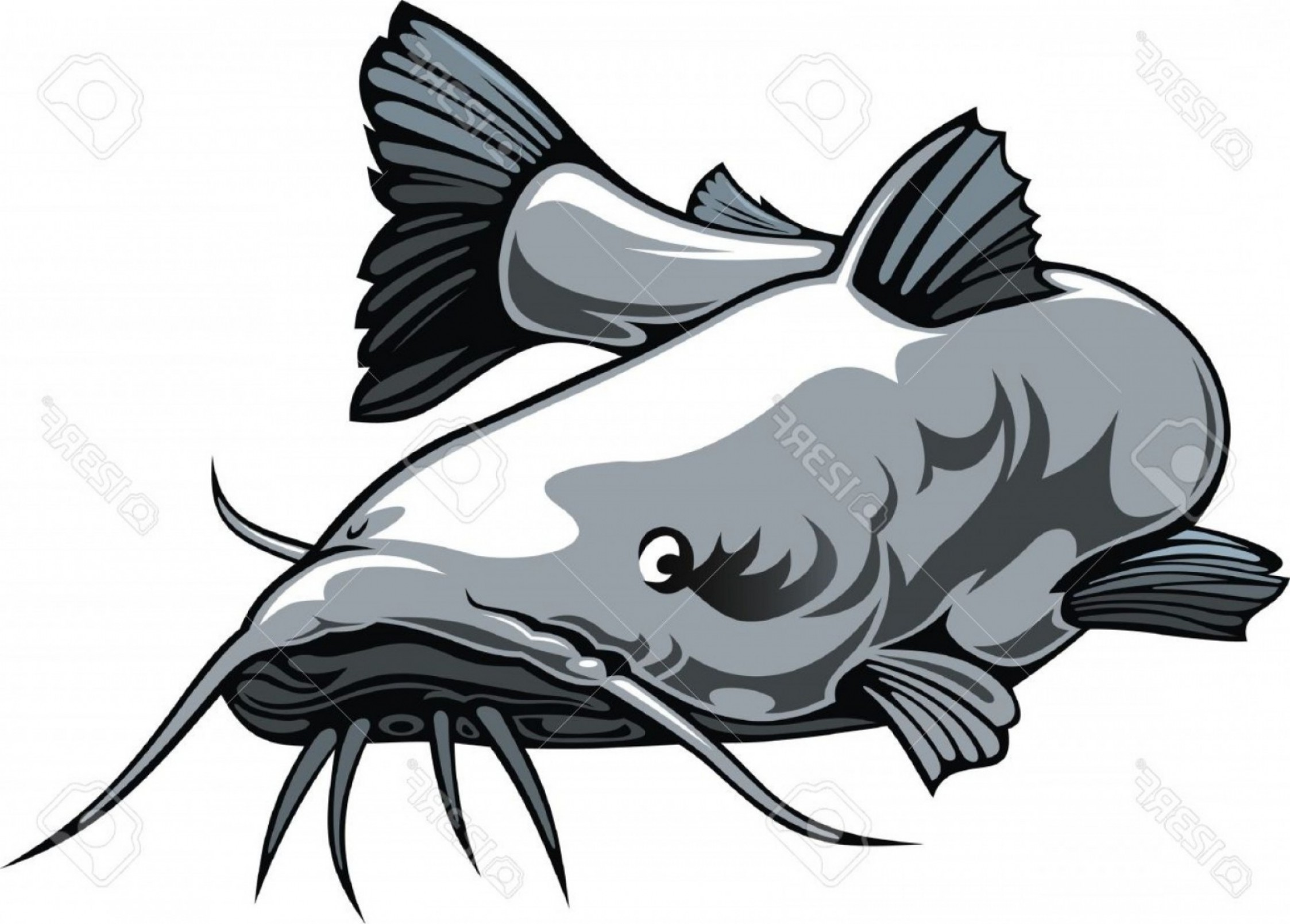 Catfish Vector Logo: Photonice Illustrated Catfish Isolated On White Background