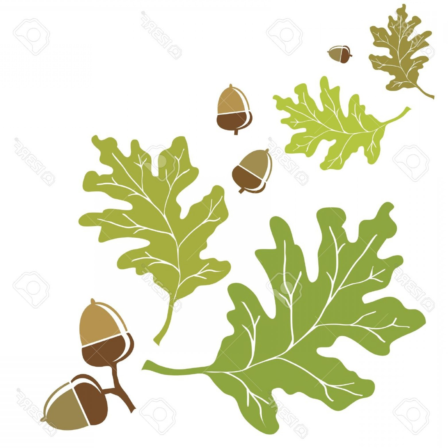 Oak Leaf Vector Clip Art | CreateMePink