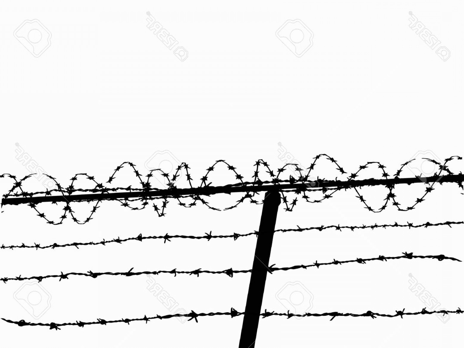 TIF Barbed Wire Vector: Photorazor Wire Fence Vector Image From A Low Angle