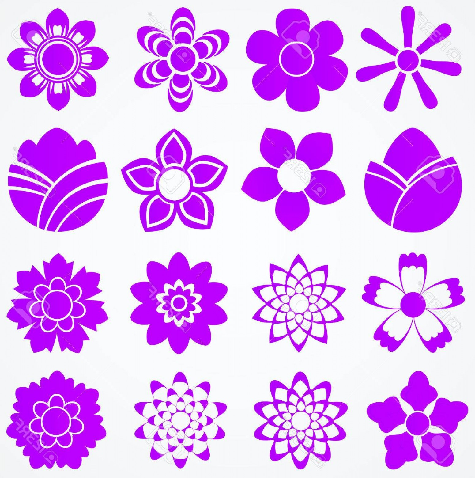 Floral Vector Icon: Photoset Of Flowers Floral Vector Icons