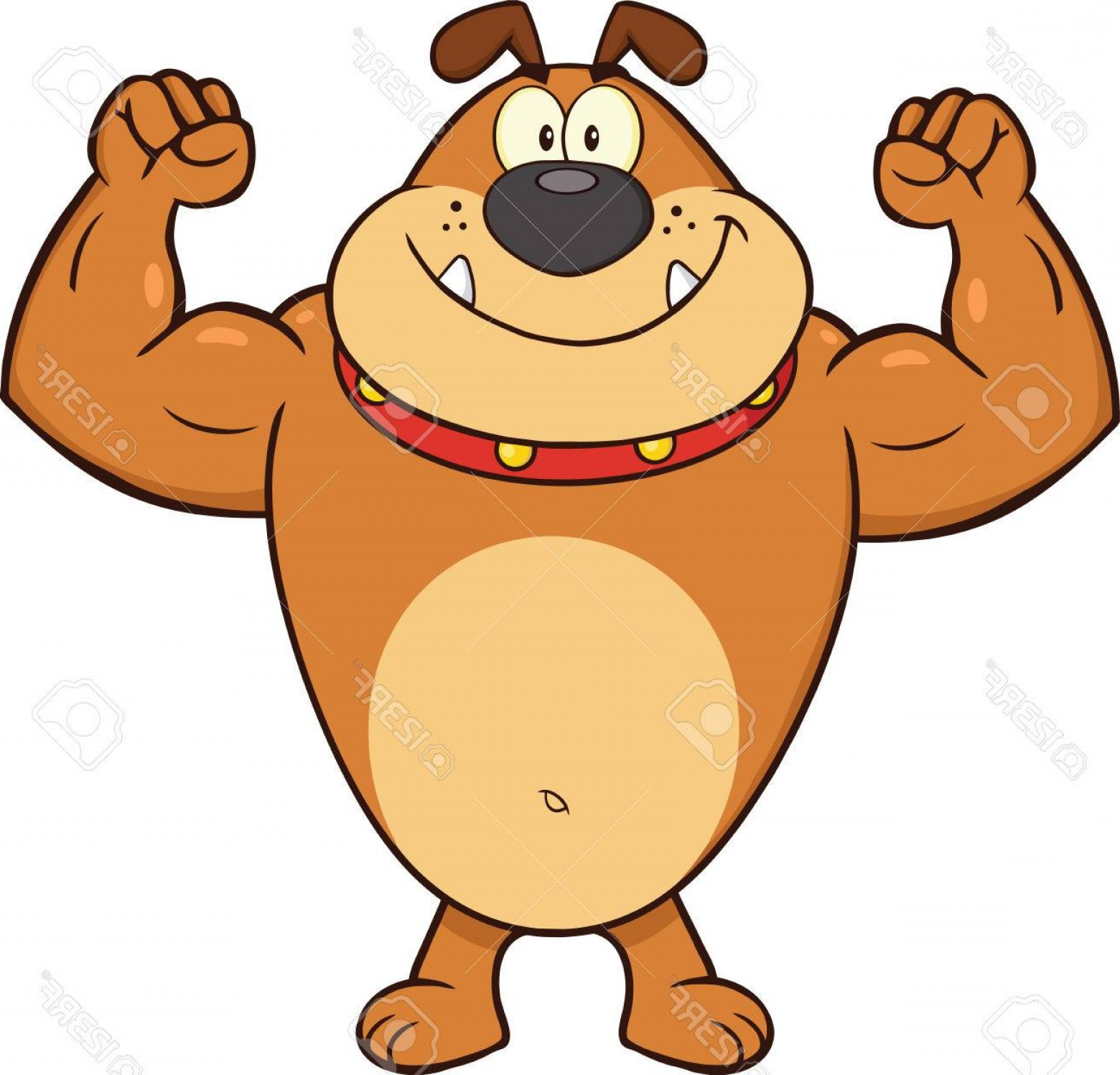 Vector Smiling Bulldog: Photosmiling Brown Bulldog Cartoon Mascot Character Showing Muscle Arms Illustration Isolated On White
