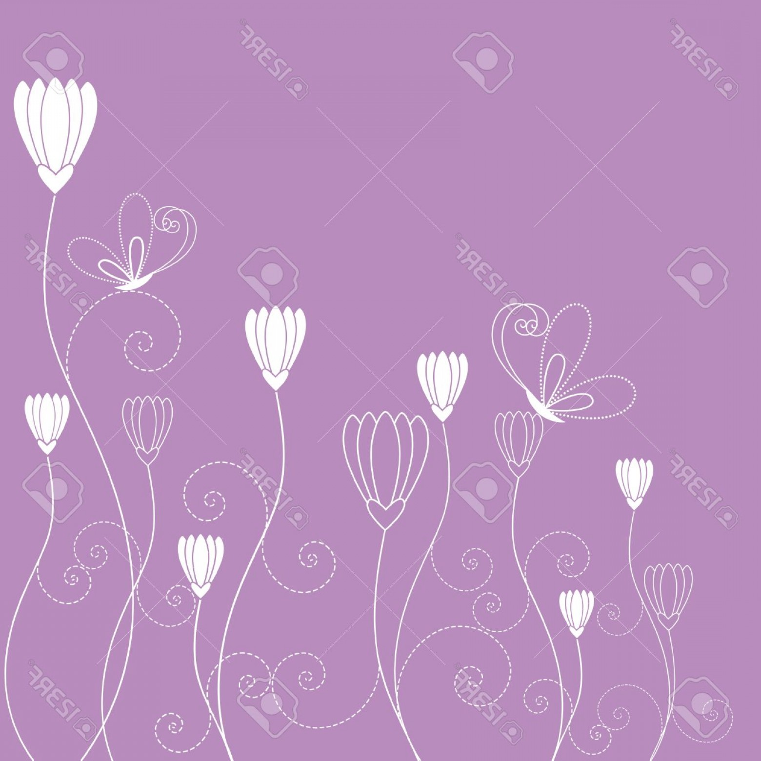 Purple Butterfly Wallpaper Vector: Photospringtime Purple White Floral Butterfly Wallpaper