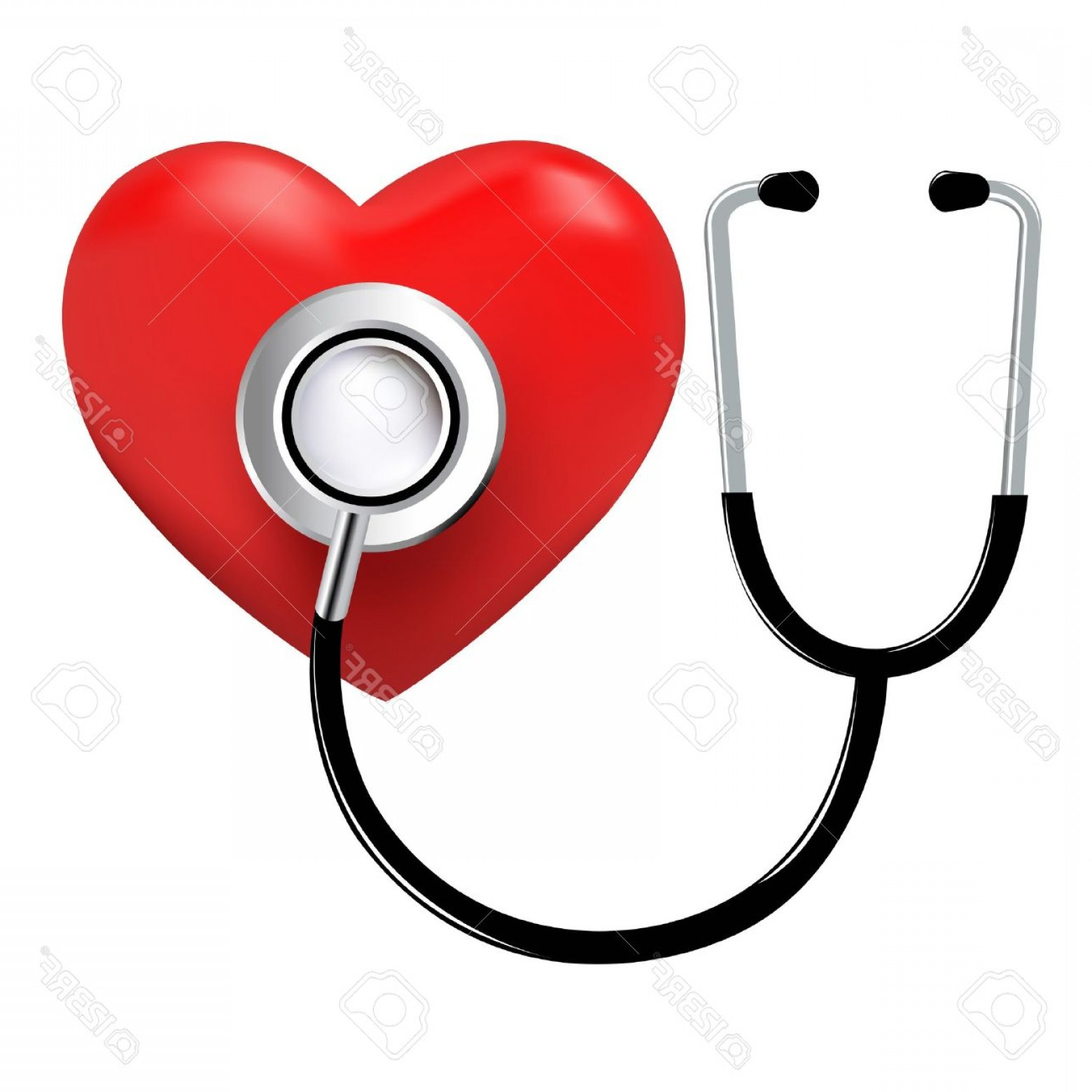 Stethoscope With Heart Vector Art: Photostethoscope And Heart Isolated On White Background Vector Illustration