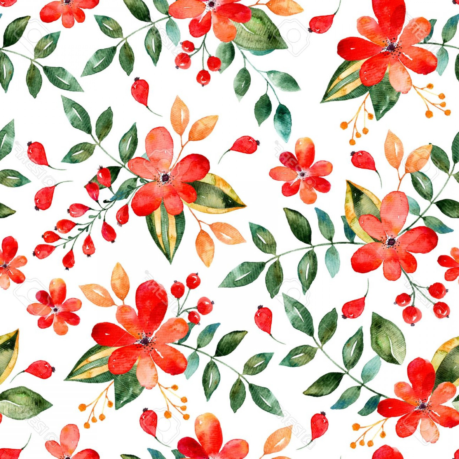 Floral Vector Illustration: Photostock Illustration Watercolor Floral Seamless Pattern With Red Flowers And Leafs Colorful Floral Vector Illustration Su