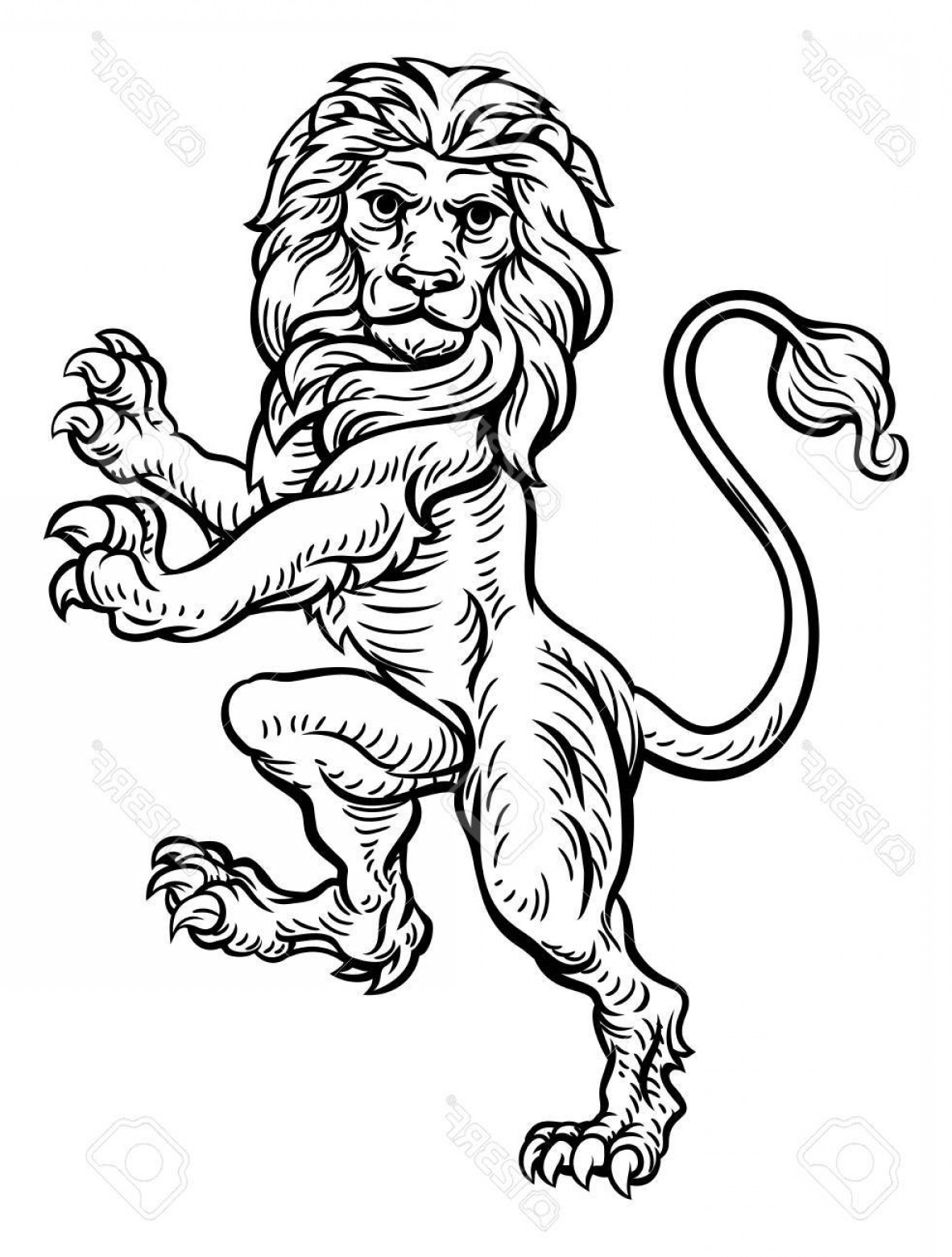 Standing Lions Crest Vector: Photostock Vector A Lion Standing Rampant On Its Hind Legs From A Coat Of Arms Or Heraldic Crest