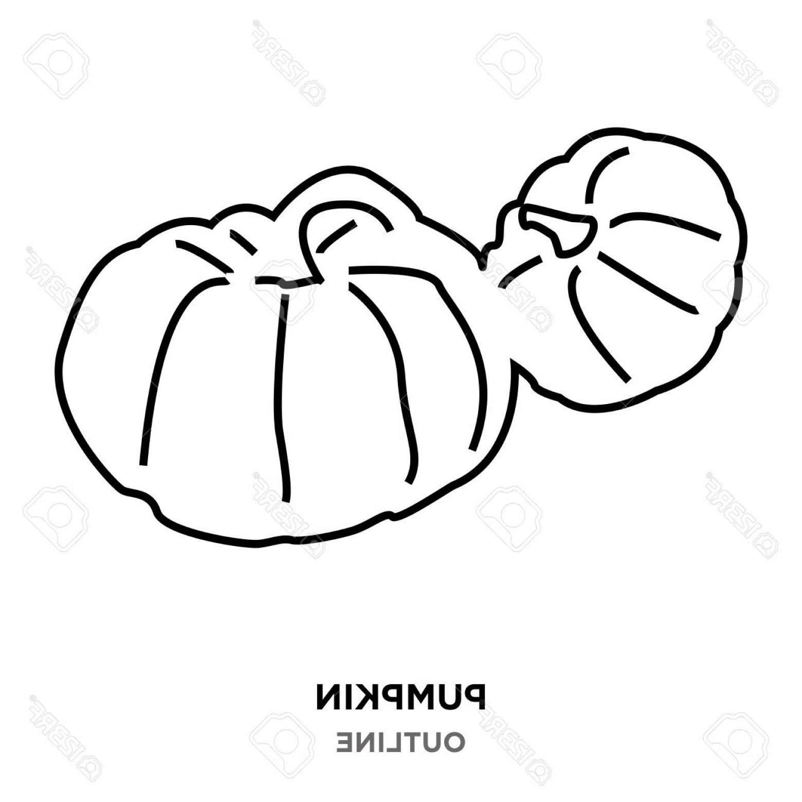 Pumpkin Outline Vector Art: Photostock Vector A Pumpkin Outline Images On White Background Small And Big Ones Together