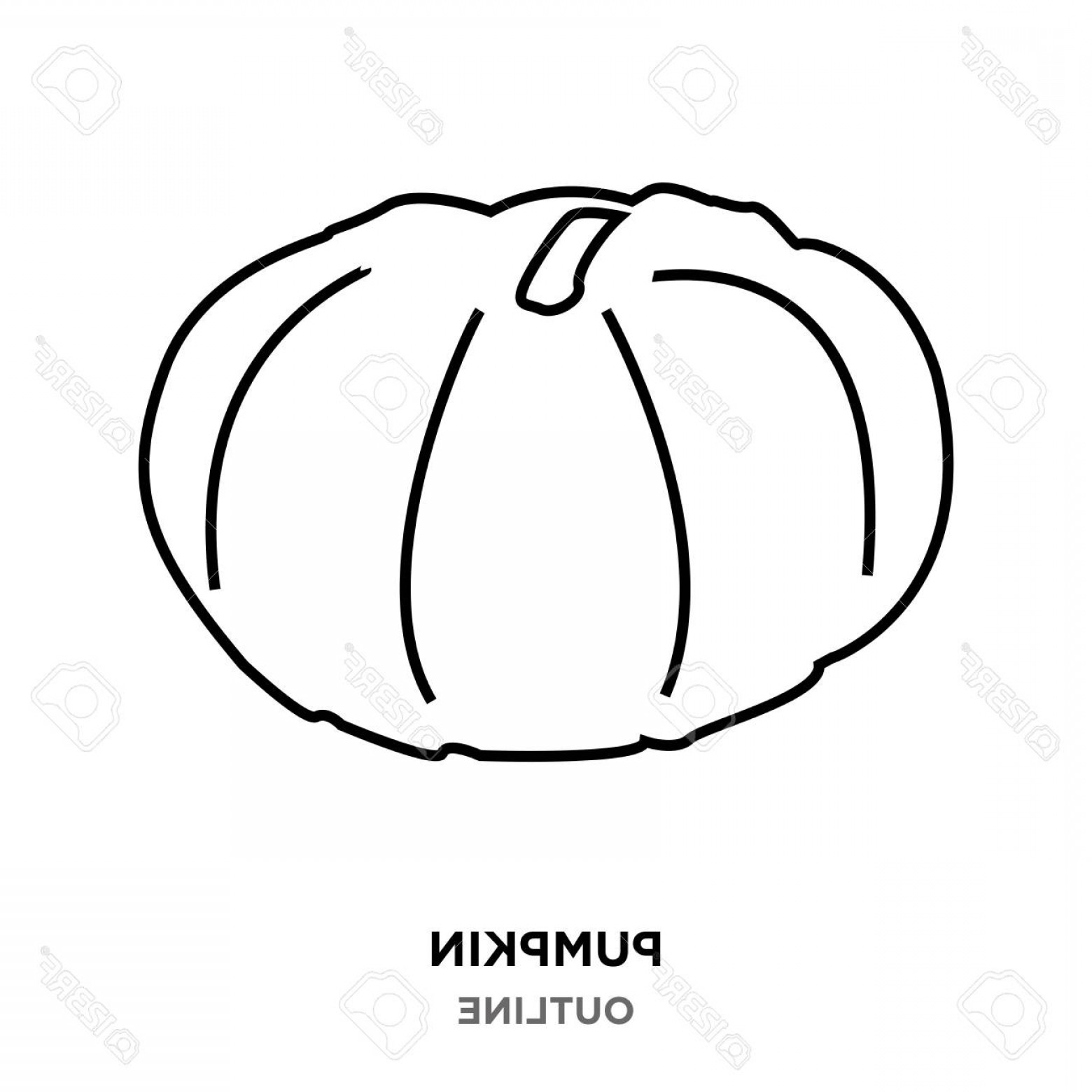 Pumpkin Outline Vector Art: Photostock Vector A Pumpkin Outline Images On White Background