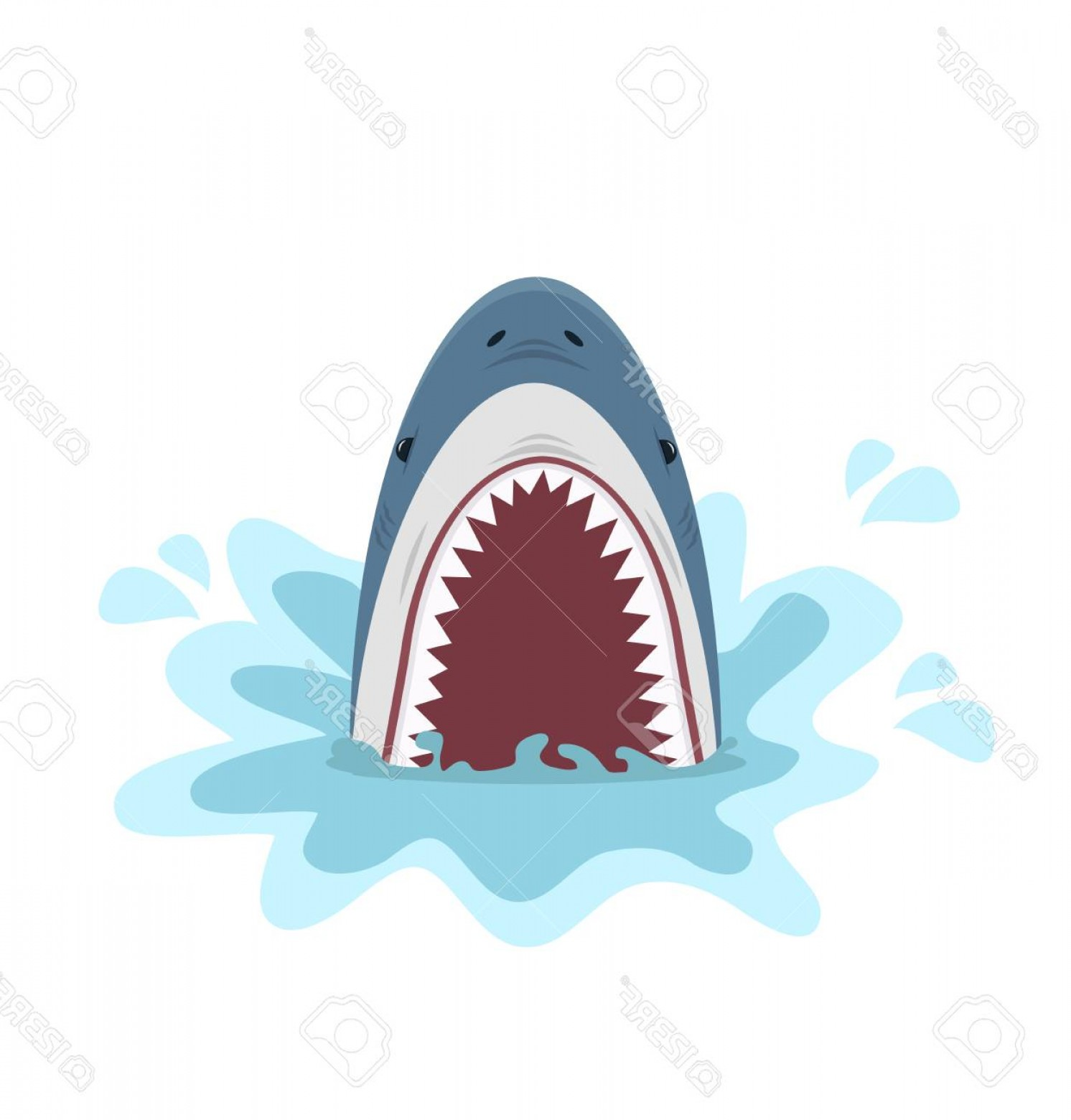 Bull Shark Jaws Vector Art: Photostock Vector A Shark With Open Jaws Isolated On Plain Background