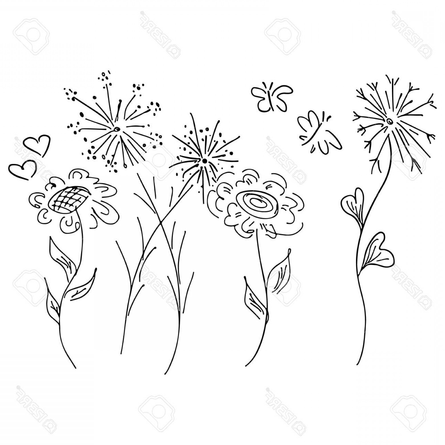 Wildflowers Outline Vector: Photostock Vector Abstract Outline Icon Of Wildflowers And Butterfly Isolated On White Background Hand Drawn Vector Il