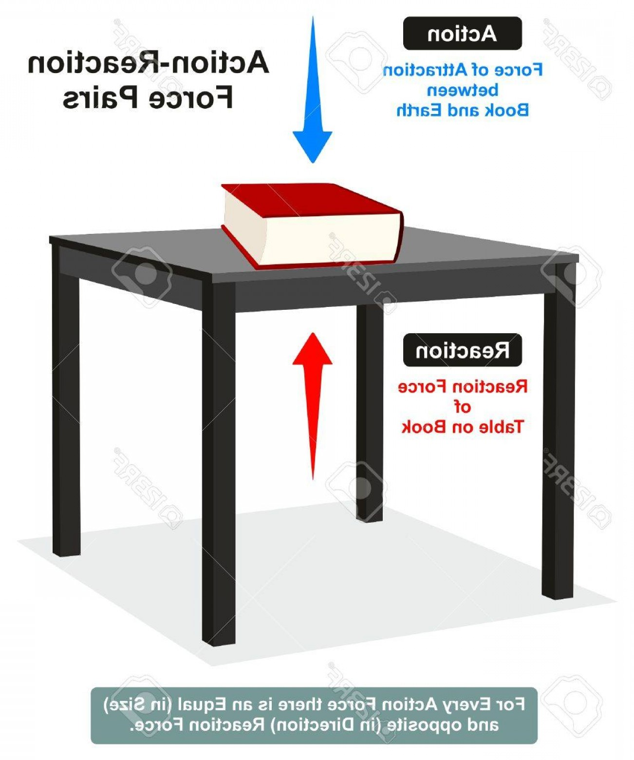 Scale Forces And Vectors: Photostock Vector Action And Reaction Physics Law Infographic Diagram With Example Of Book On Table Which Shows Both F