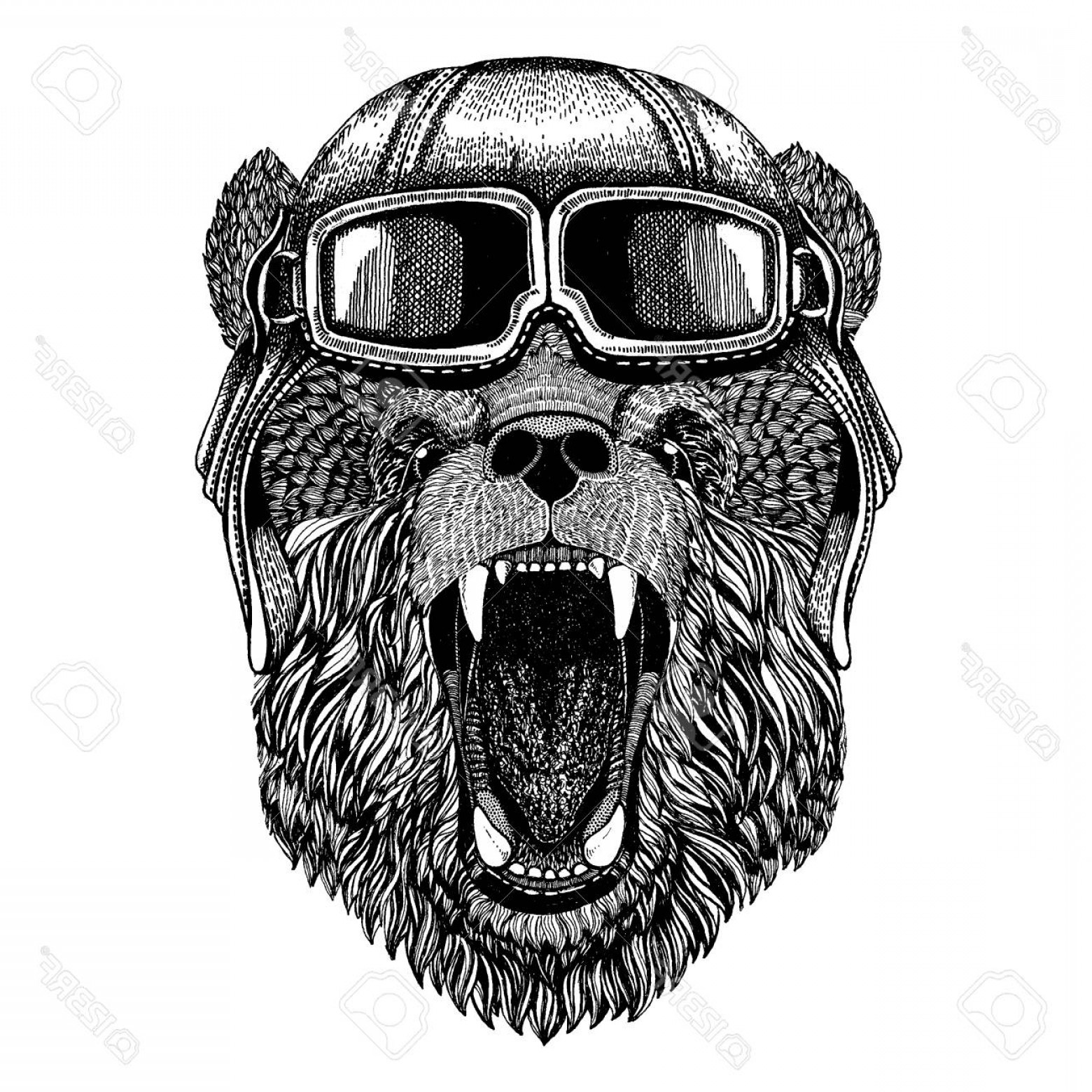Aviator Vector Ink Drawings: Photostock Vector Animal Wearing Aviator Helmet With Glasses Vector Picture Bear Hand Drawn Picture For Tattoo T Shirt