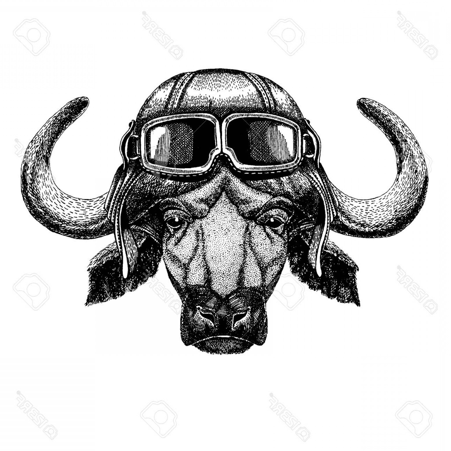 Aviator Vector Ink Drawings: Photostock Vector Animal Wearing Aviator Helmet With Glasses Vector Picture Buffalo Bull Ox Hand Drawn Illustration Fo