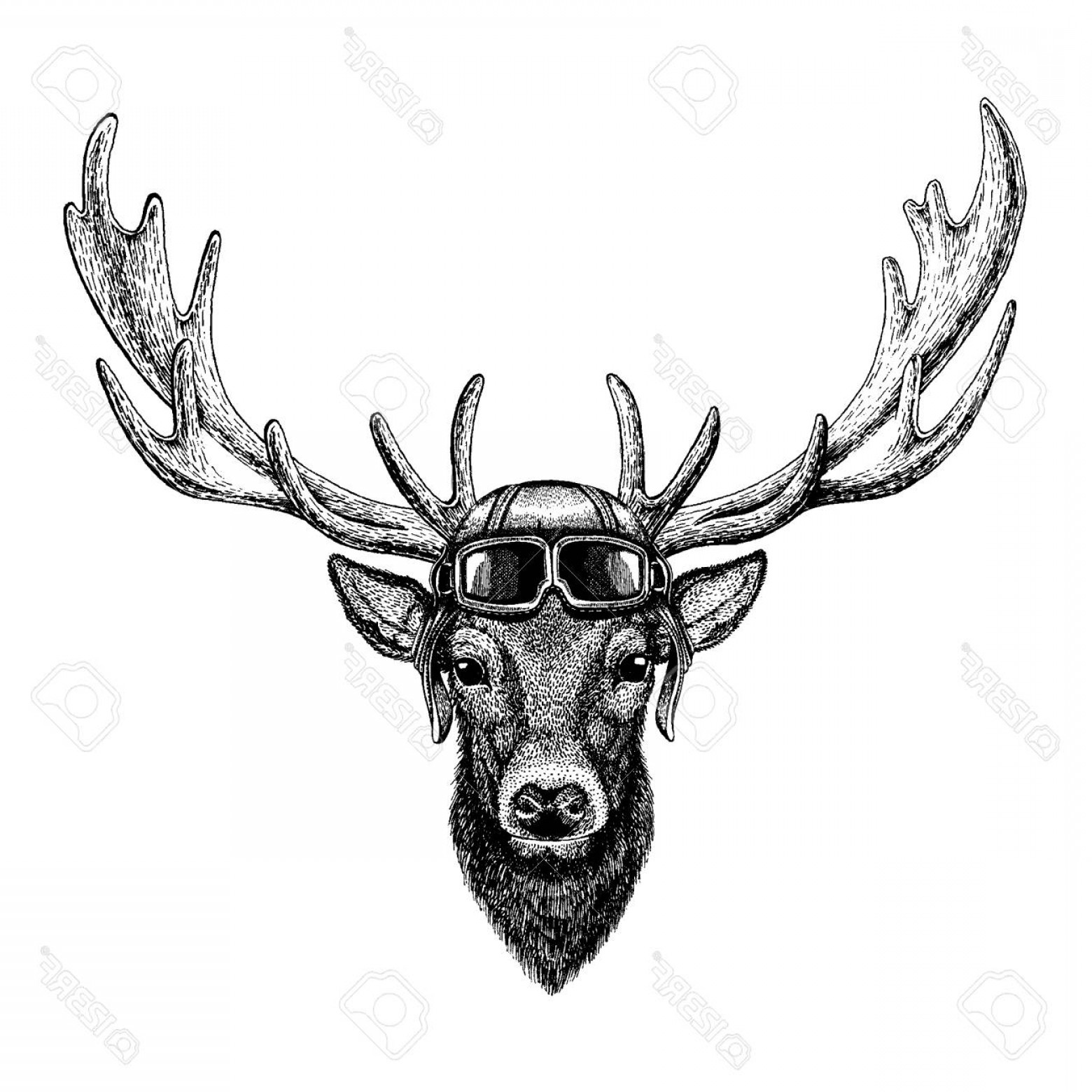 Aviator Vector Ink Drawings: Photostock Vector Animal Wearing Aviator Helmet With Glasses Vector Picture Deer Hand Drawn Illustration For Tattoo Em