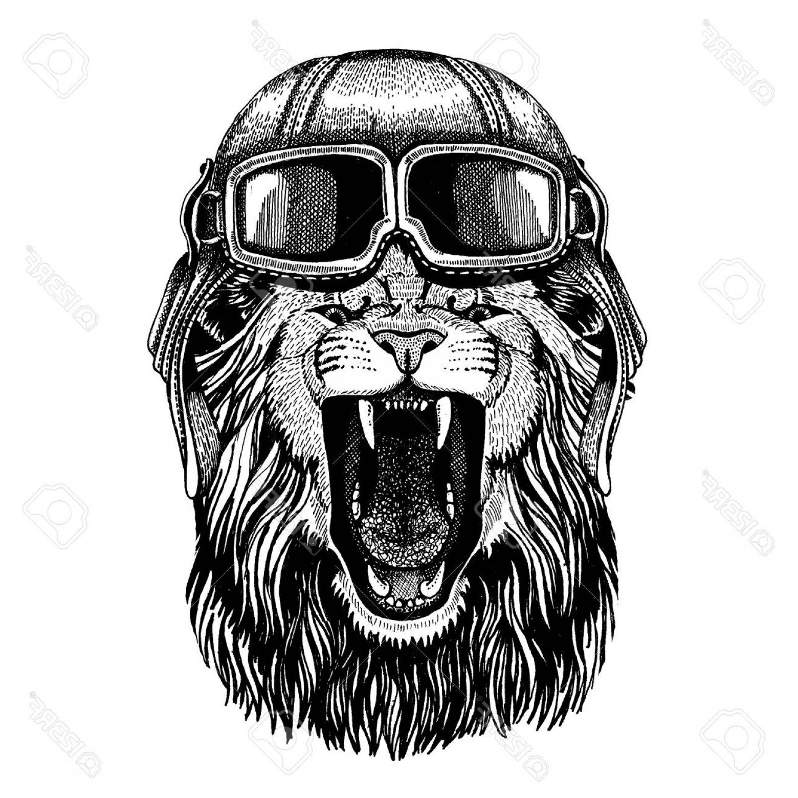 Aviator Vector Ink Drawings: Photostock Vector Animal Wearing Aviator Helmet With Glasses Vector Picture Hand Drawn Image Of Lion For Tattoo T Shir