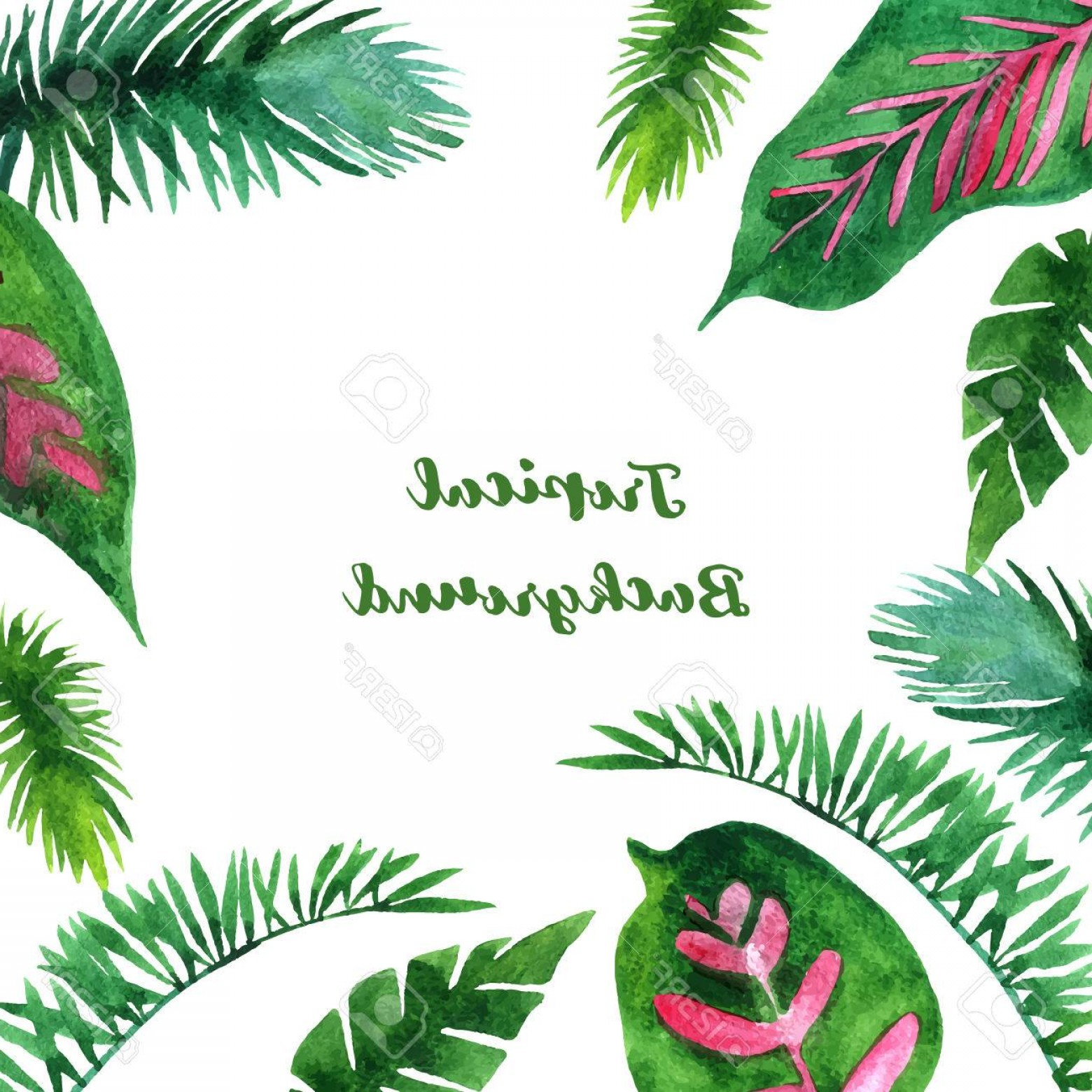 Watercolor Palm Tree Vector: Photostock Vector Background With Watercolor Green Leaves Of Palm Tree Exotic Leaves Tropical Nature Background Hand D