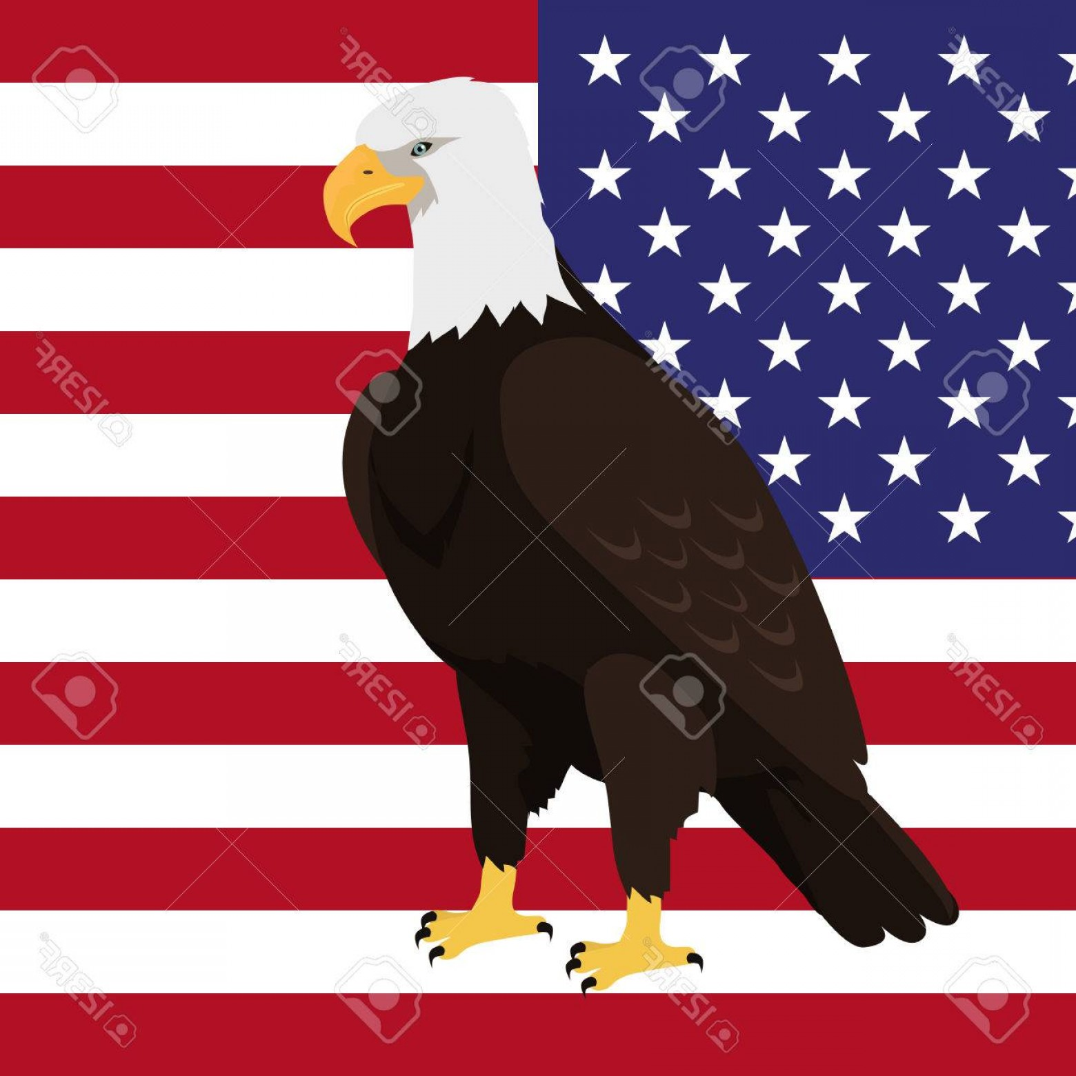 Patriotic Bald Eagle Vector: Photostock Vector Bald Eagle Vector Usa National Bird Symbol And Flag For Patriotic National Symbolic Patriotic Poster