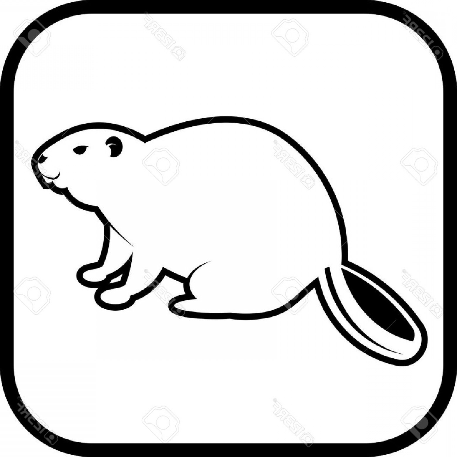 Vector Silhouette Beaver: Photostock Vector Beaver Vector Icon Isolated