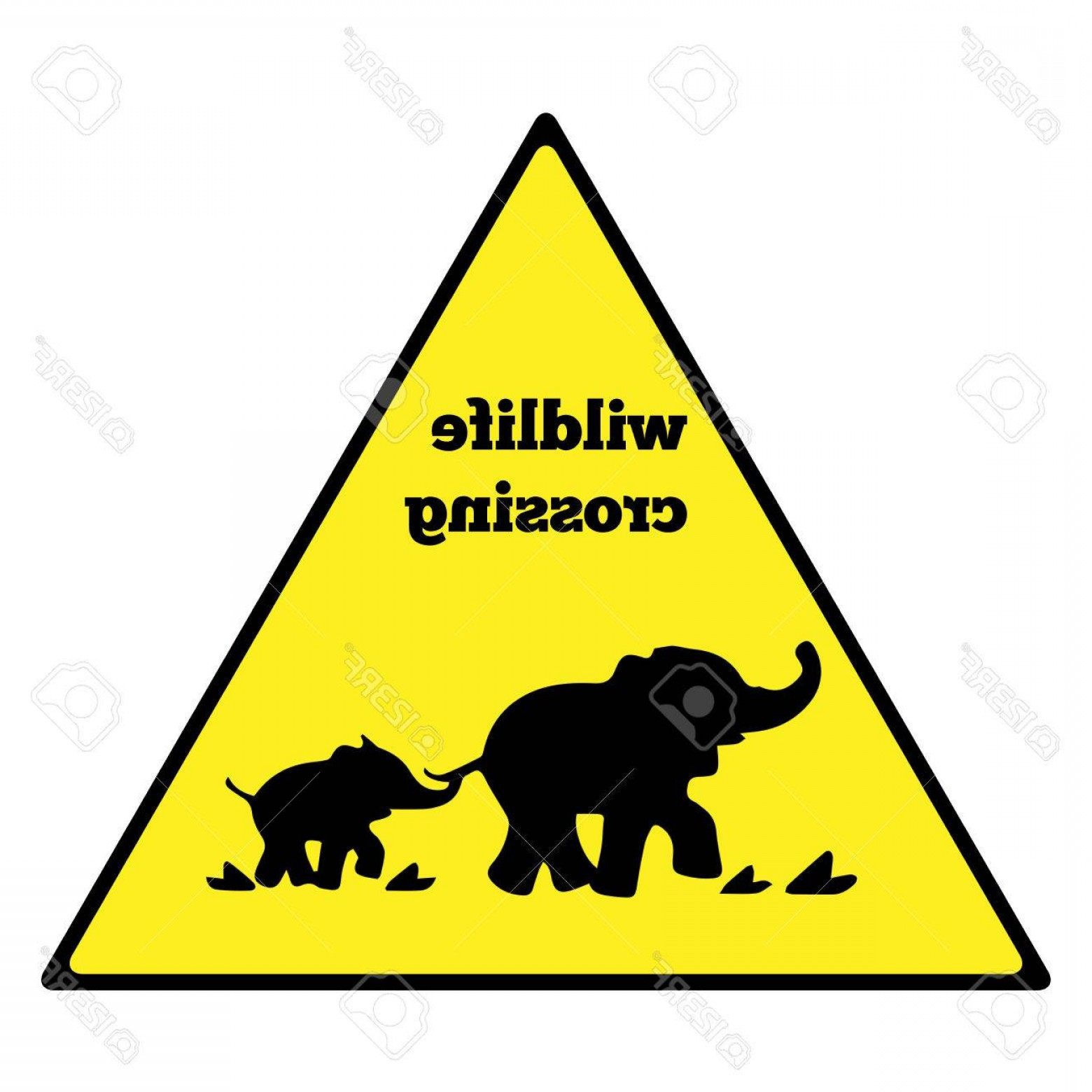Road Sign Silhouette Vector Bear: Photostock Vector Beware Elephant Traffic Sign Elephant Warning Traffic Sign Warning Traffic Sign Isolated On A White