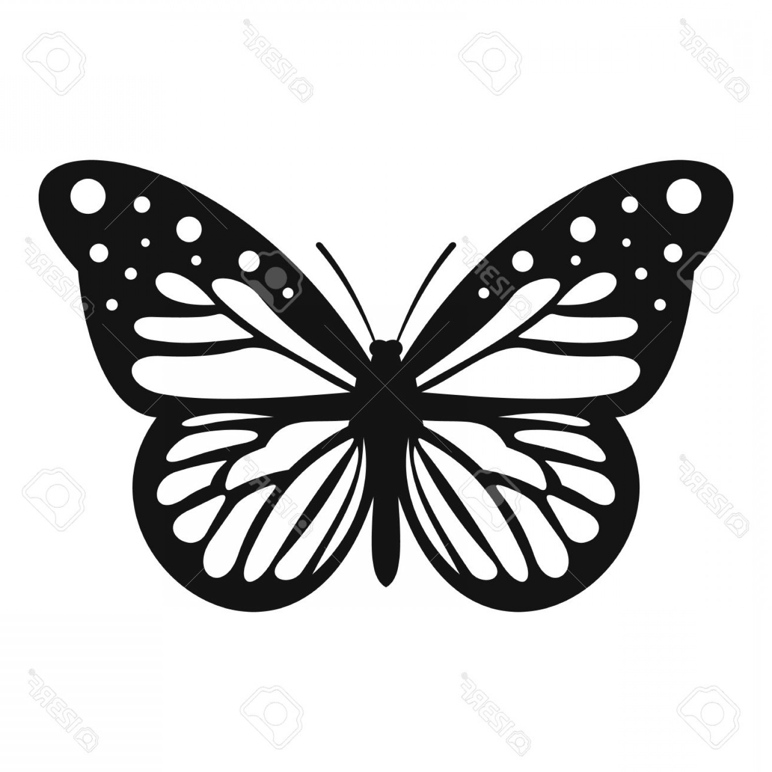 Butterly Vector: Photostock Vector Big Butterfly Icon Simple Illustration Of Big Butterfly Vector Icon For Web