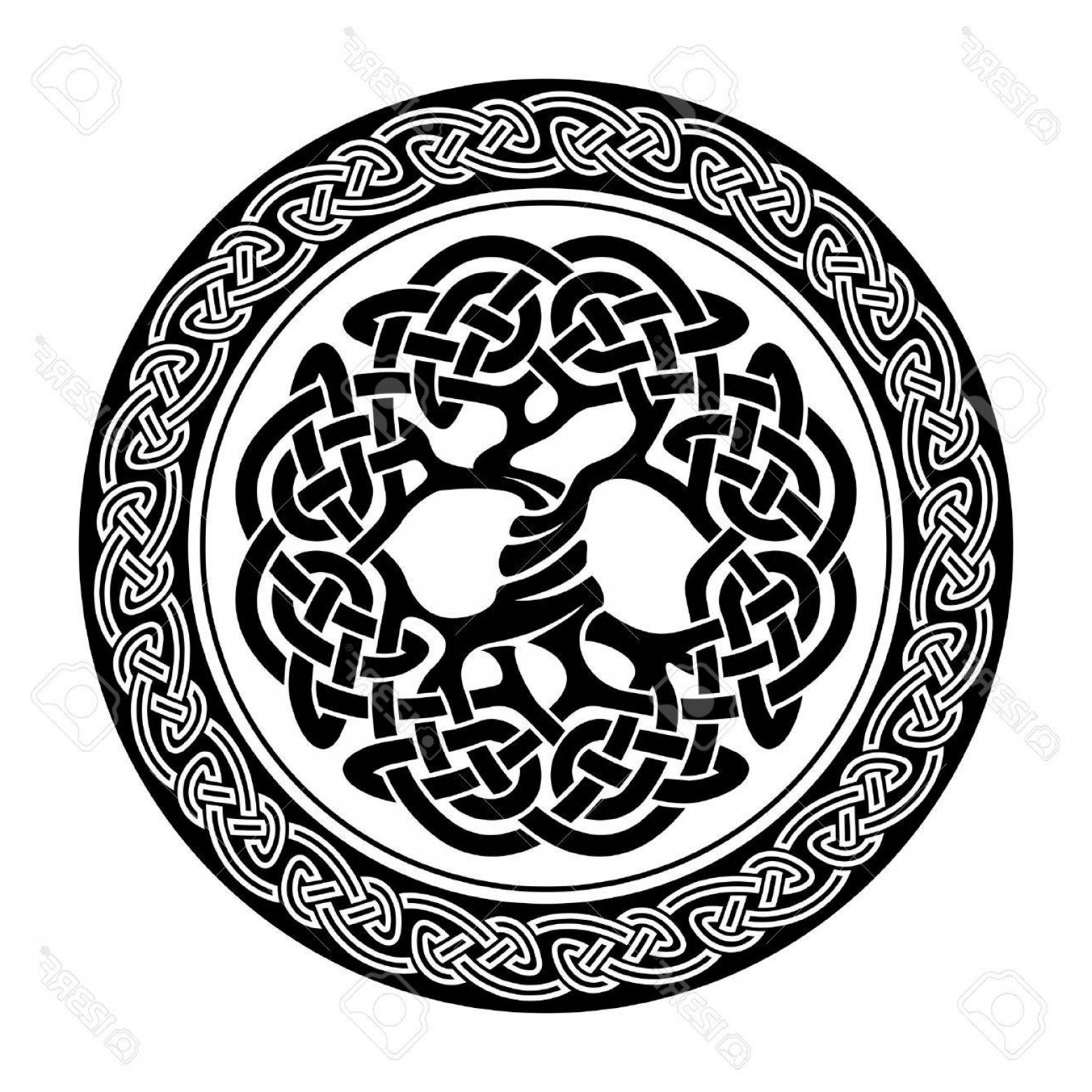 Celtic Tree Vector: Photostock Vector Black And White Illustration Of Celtic Tree Of Life Vector Illustration
