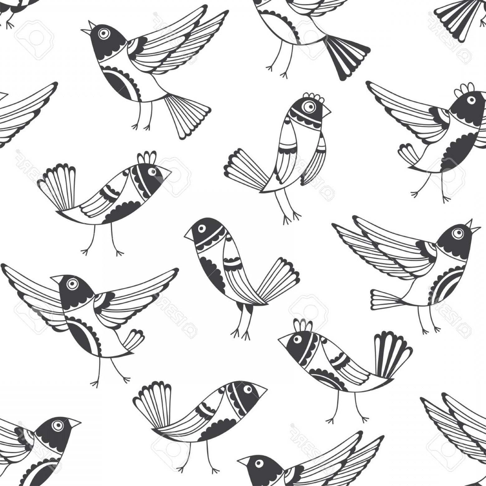 Bird In -Flight Vector Image: Photostock Vector Black And White Seamless Pattern With Cartoon Birds Vector Doodle Background With Cute Hand Drawn Bi