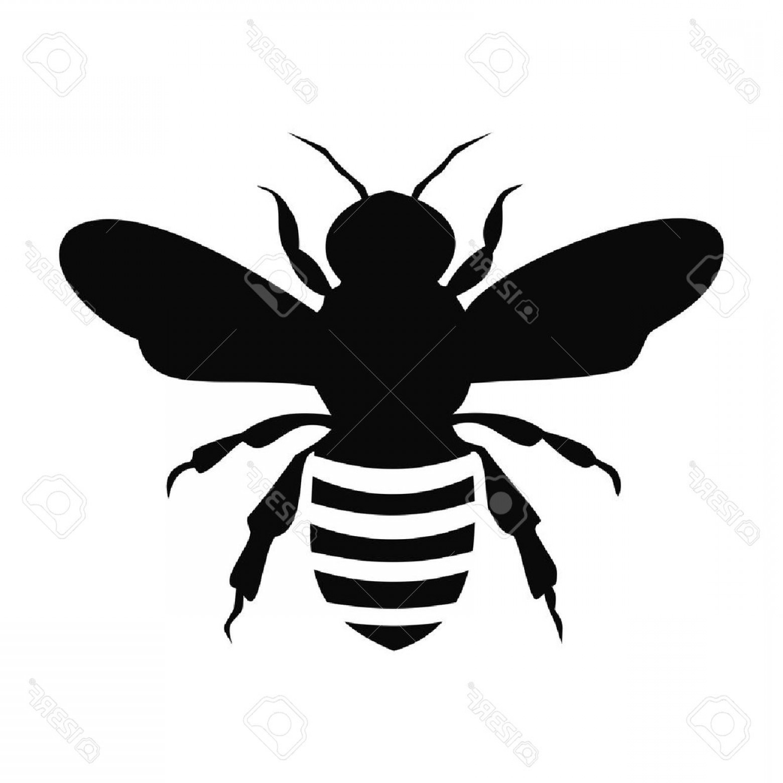 Bee Outline Vector: Photostock Vector Black Bee Silhouette Isolated On White Background Illustration