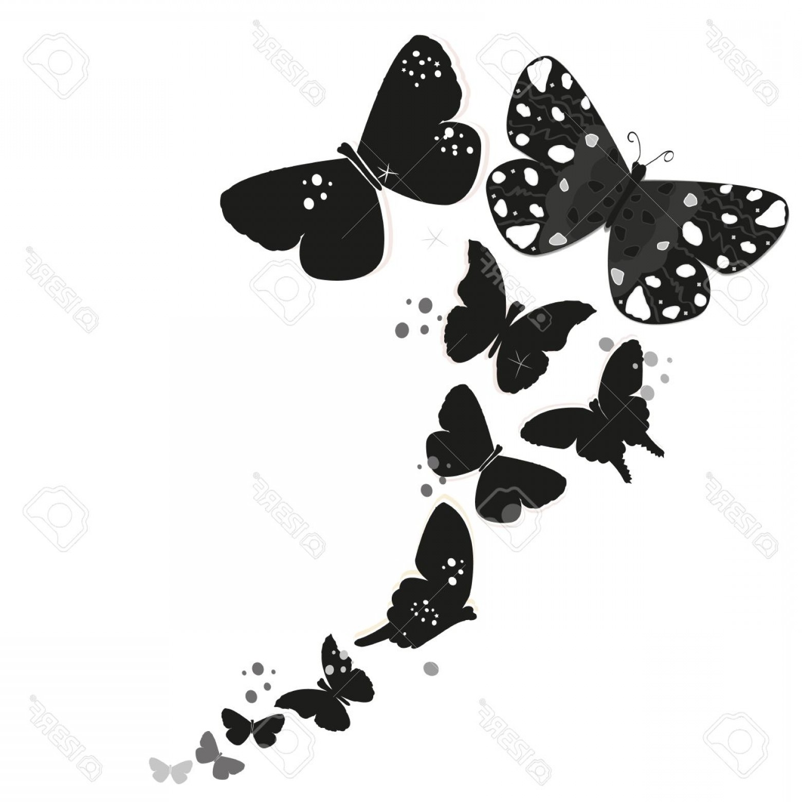 Butter Fly And Flower Vector Black And White: Photostock Vector Black Butterfly Design And Abstract Decorative Flowers Vector Background